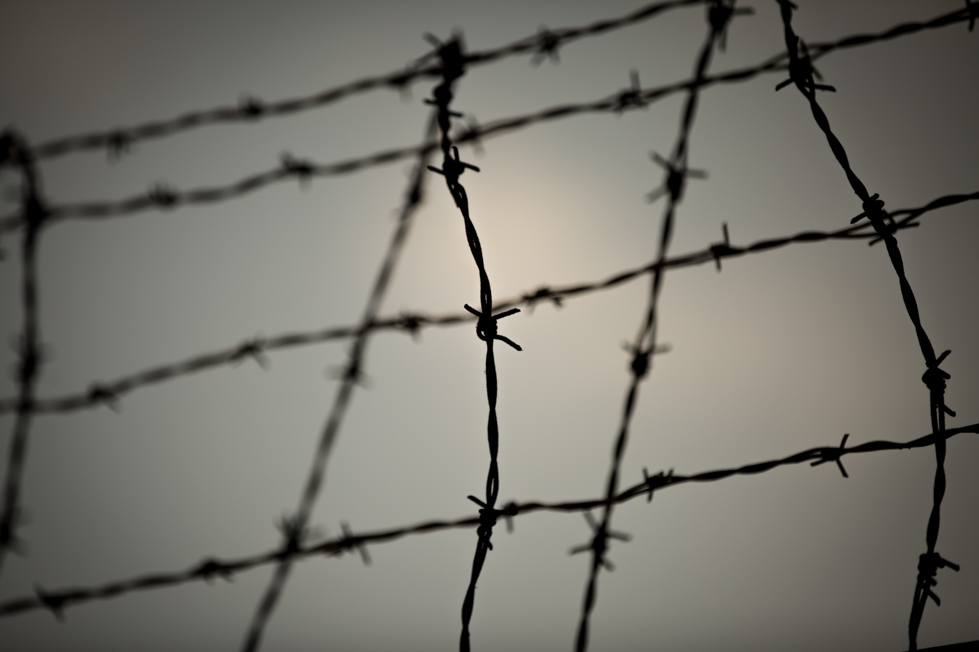 Barbed Wire Free Stock Photo - Public Domain Pictures