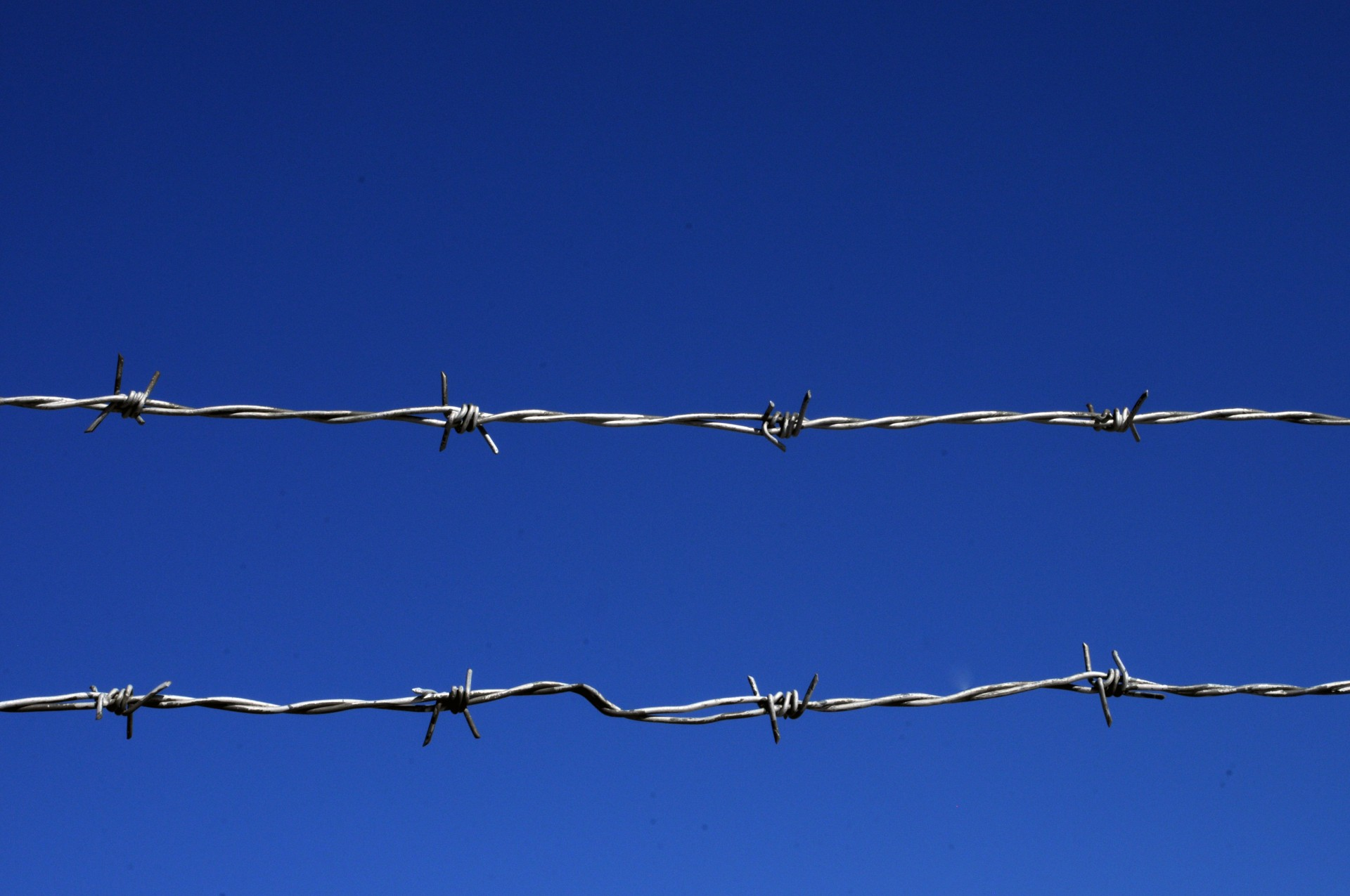 Barbed Wire Fence Blue Sky Free Stock Photo - Public Domain Pictures