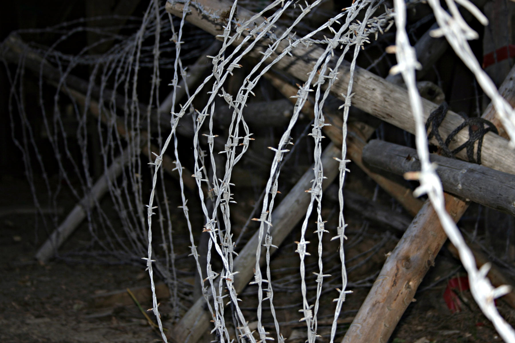 Barbed wire, Barb, Barbed, Barbs, Fence, HQ Photo
