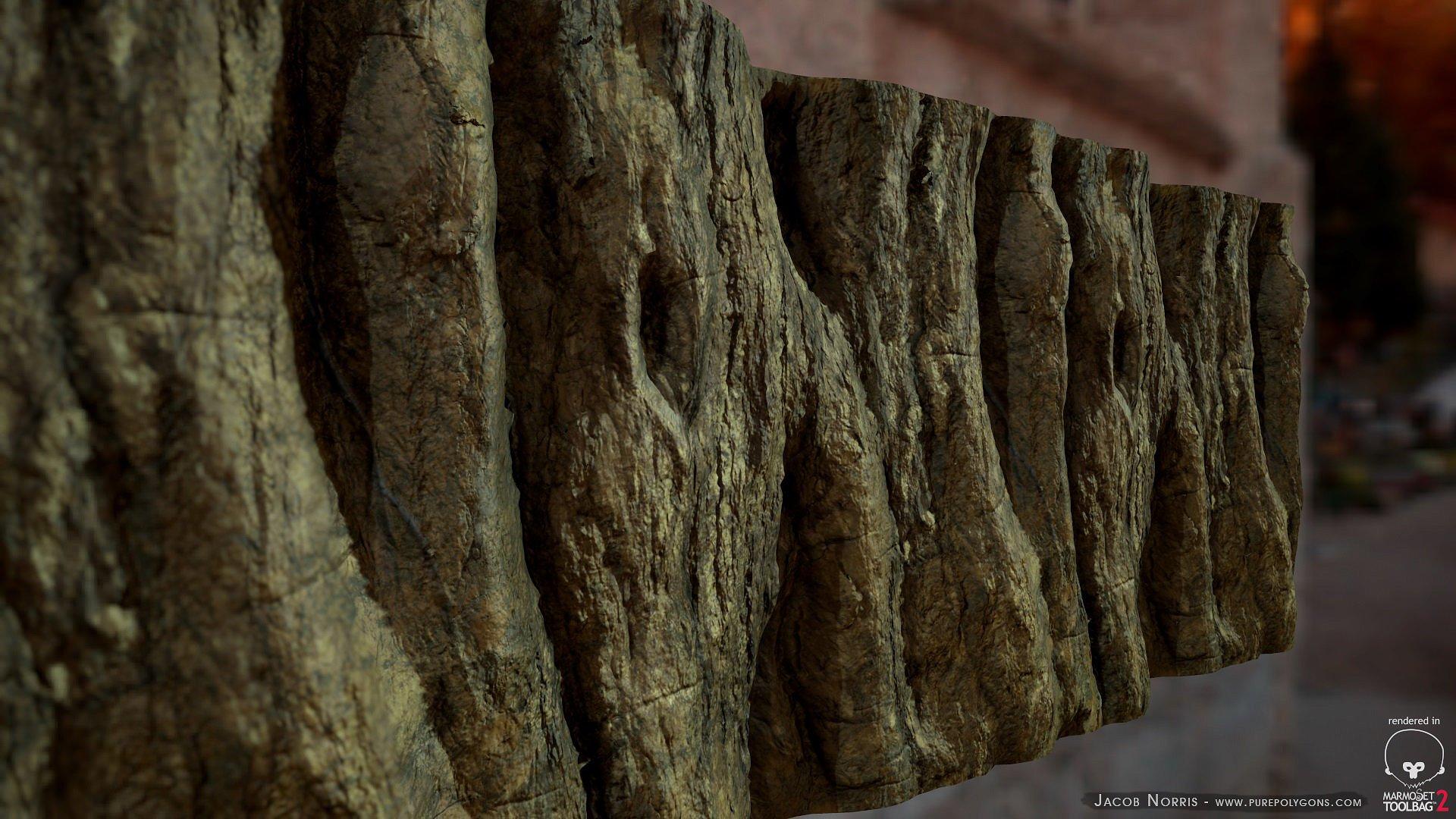 Textures - Tree Bark ~ Organic ~ Creative Market