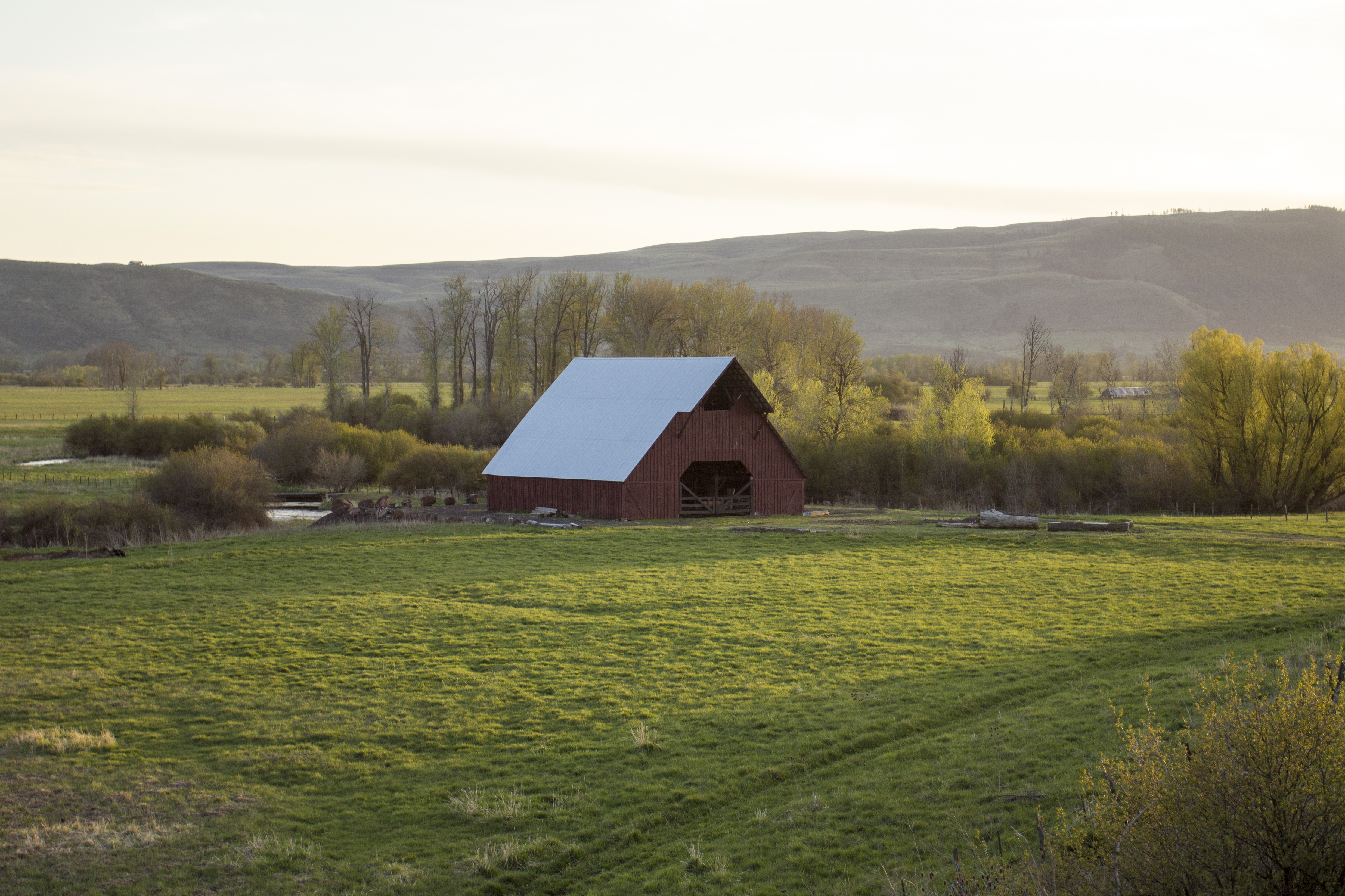 Barn outside of Richland, OR, Barn, Building, Field, Grass, HQ Photo