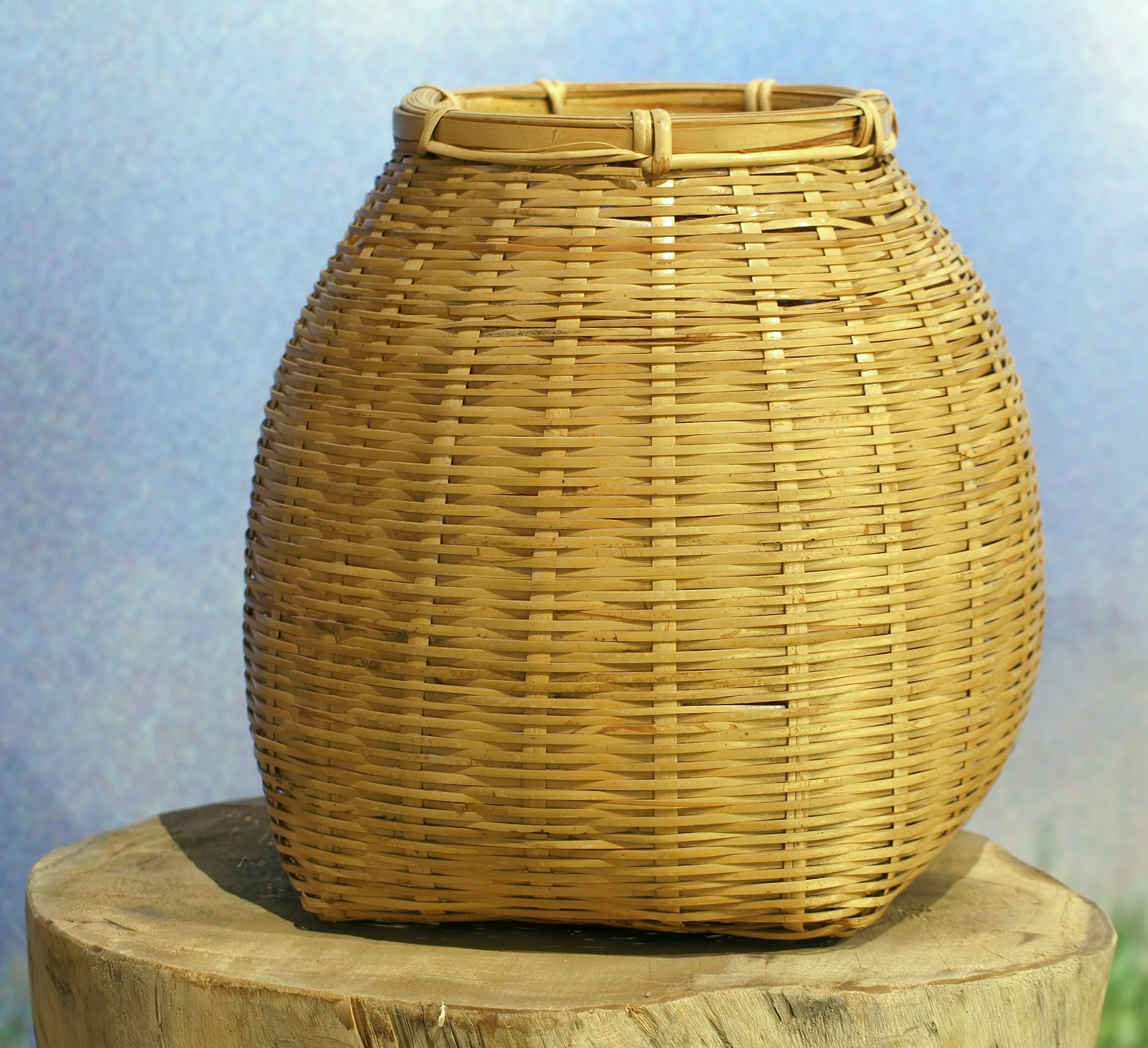 Basket, Container, Tree, Weaved, Woven, HQ Photo