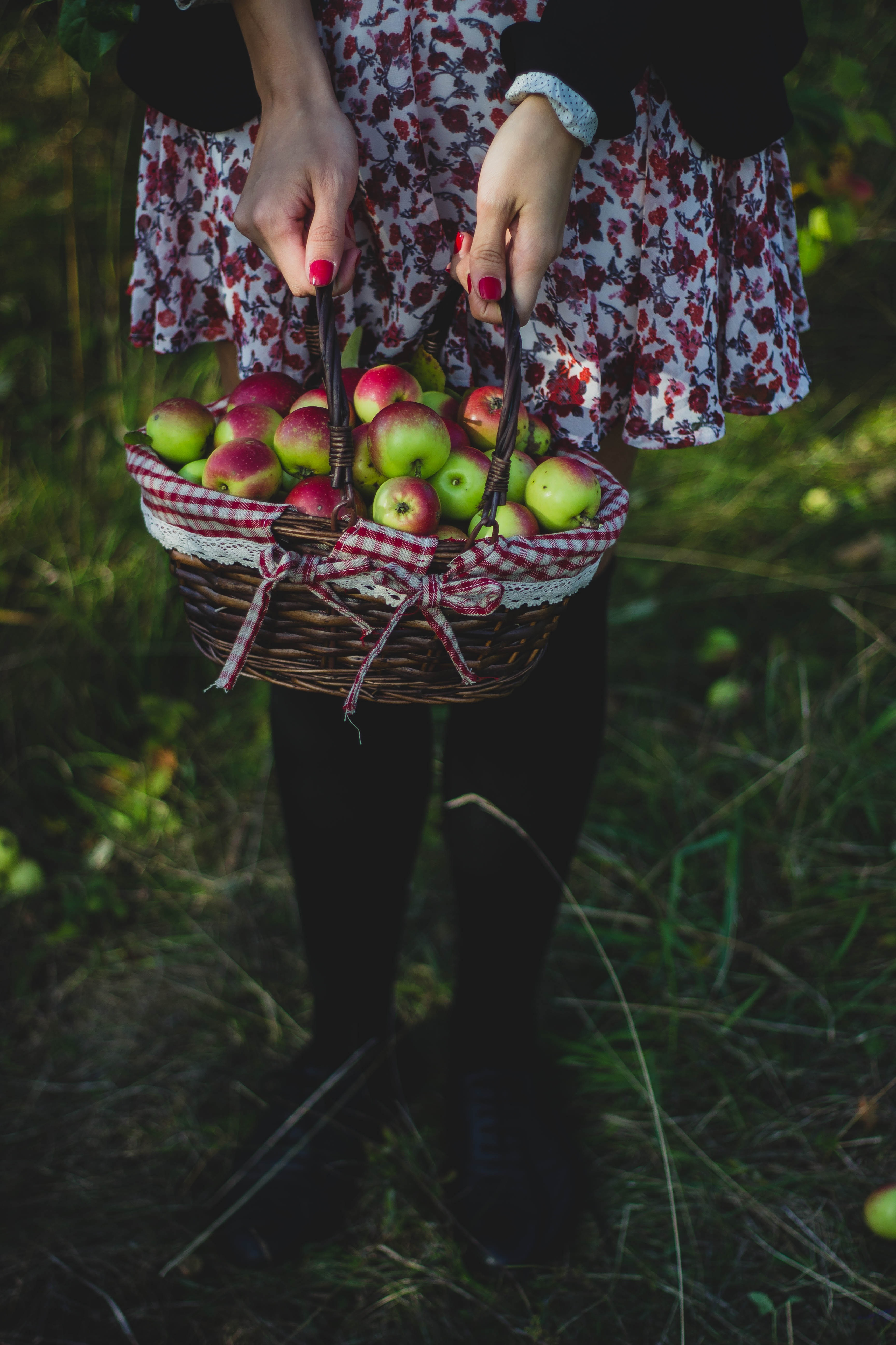 Basket full of apples photo