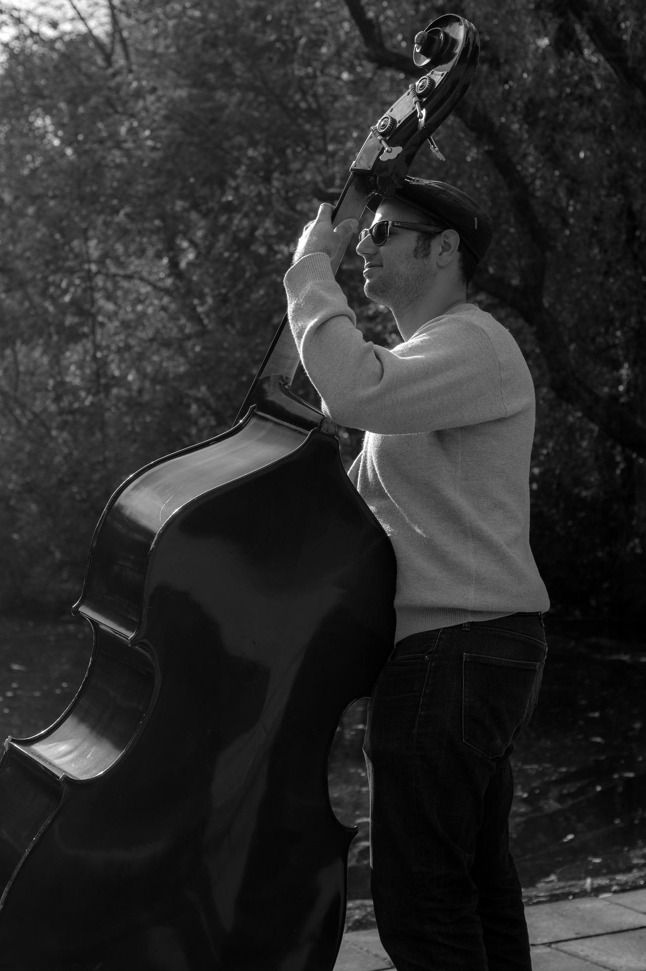 Bass player photo