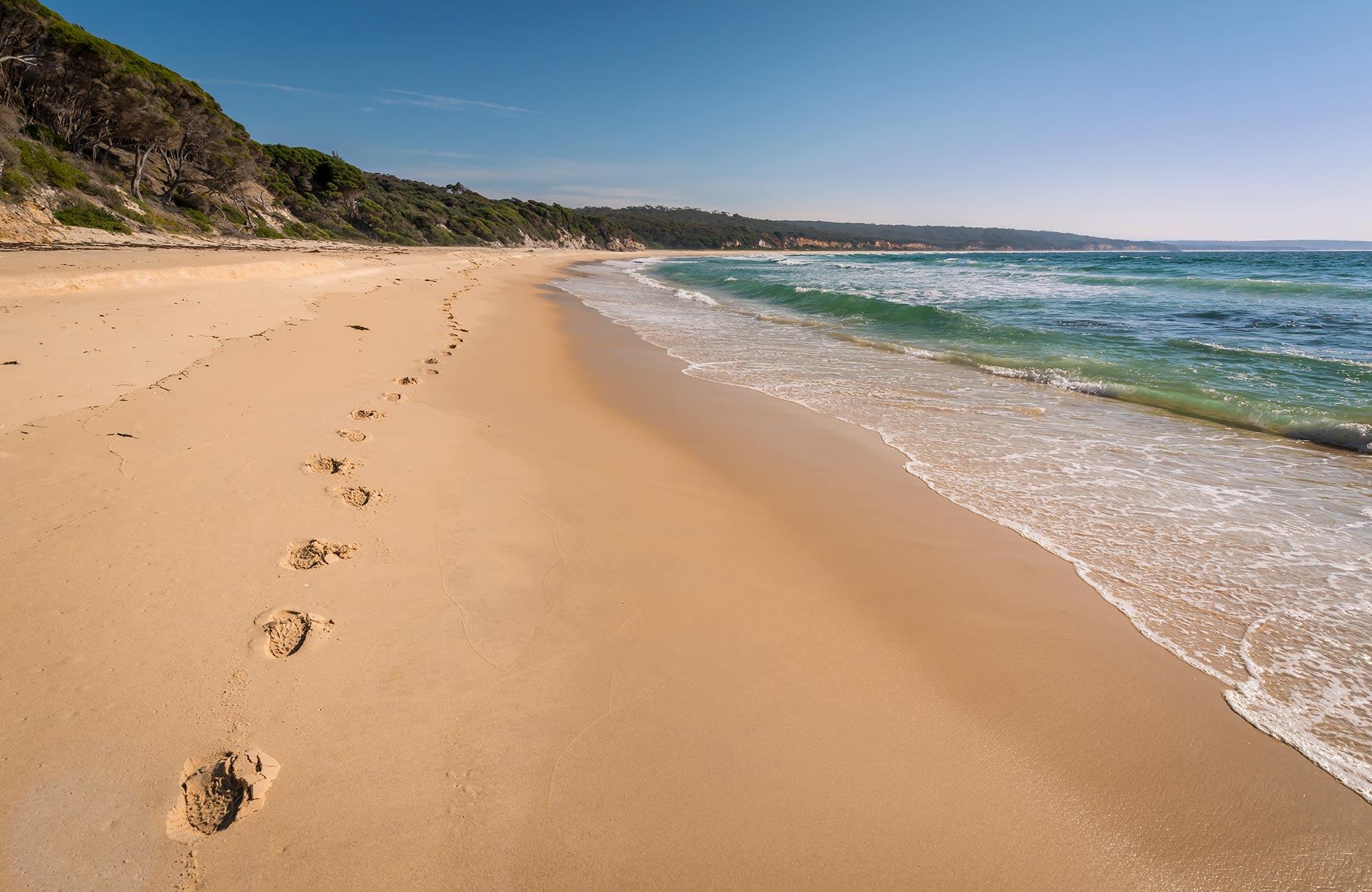 Terrace Beach and Lennards Island | NSW National Parks