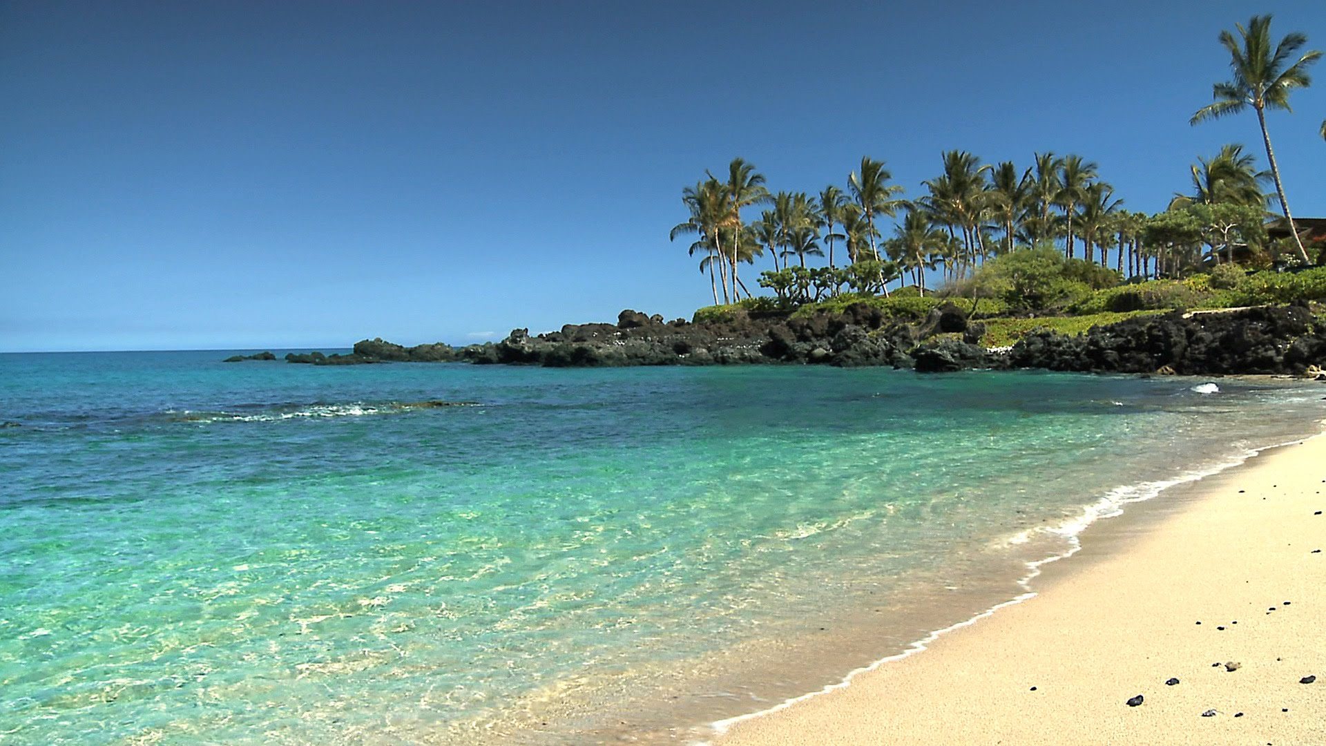 Hawaii beach photo