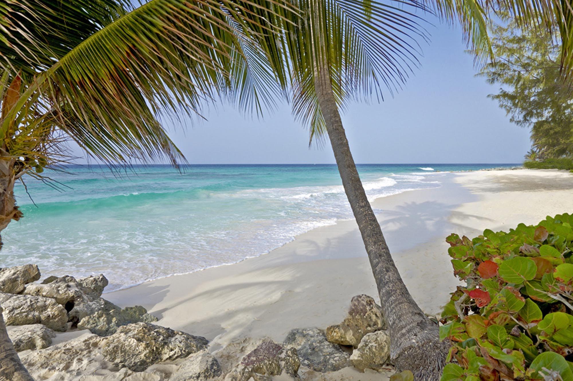 Barbados Resorts   Turtle Beach – Elegant Hotels   Barbados All ...