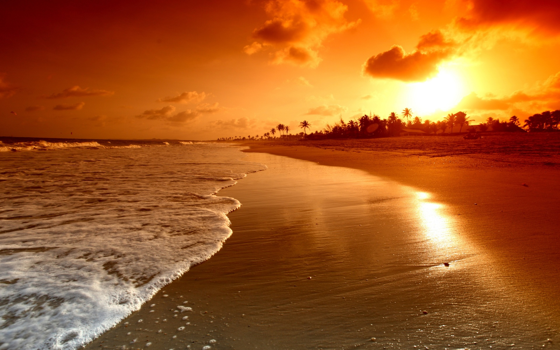 California Beaches At Sunset HD Wallpaper, Background Images
