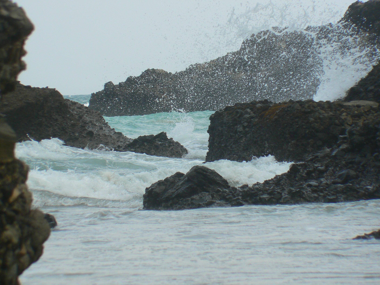 Beach life photo