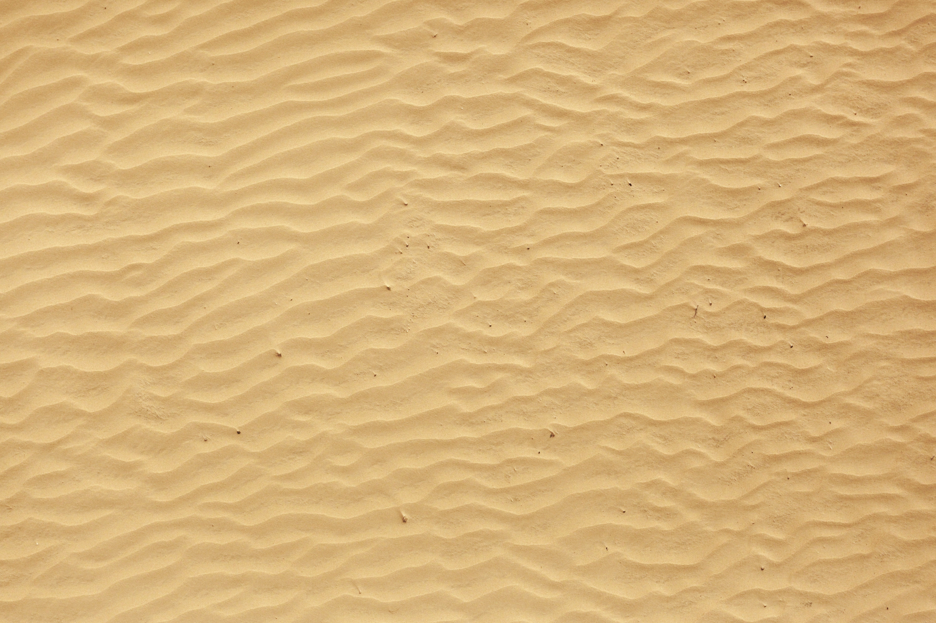 Background Beach Sand | Gallery Yopriceville - High-Quality Images ...