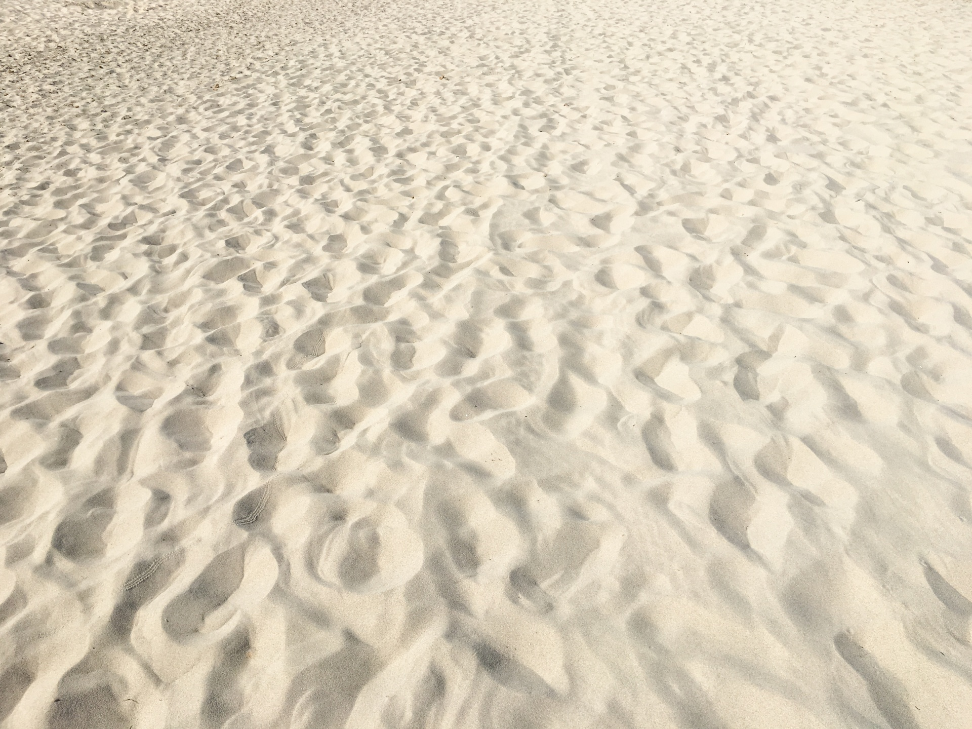 Beach Sand Background Free Stock Photo - Public Domain Pictures