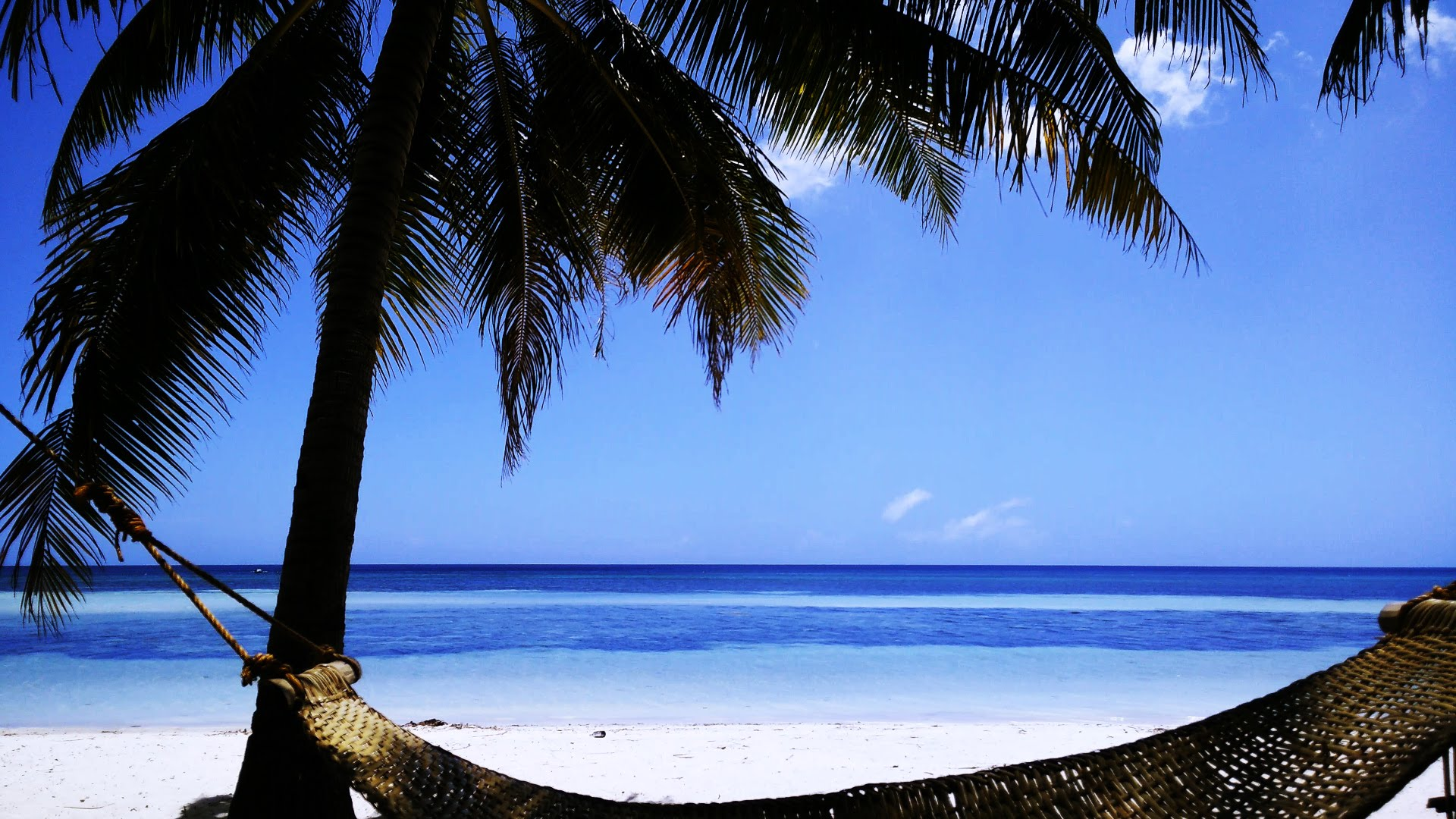 Free Photo Beach Scene Sand Wooden Nature Free Download Jooinn