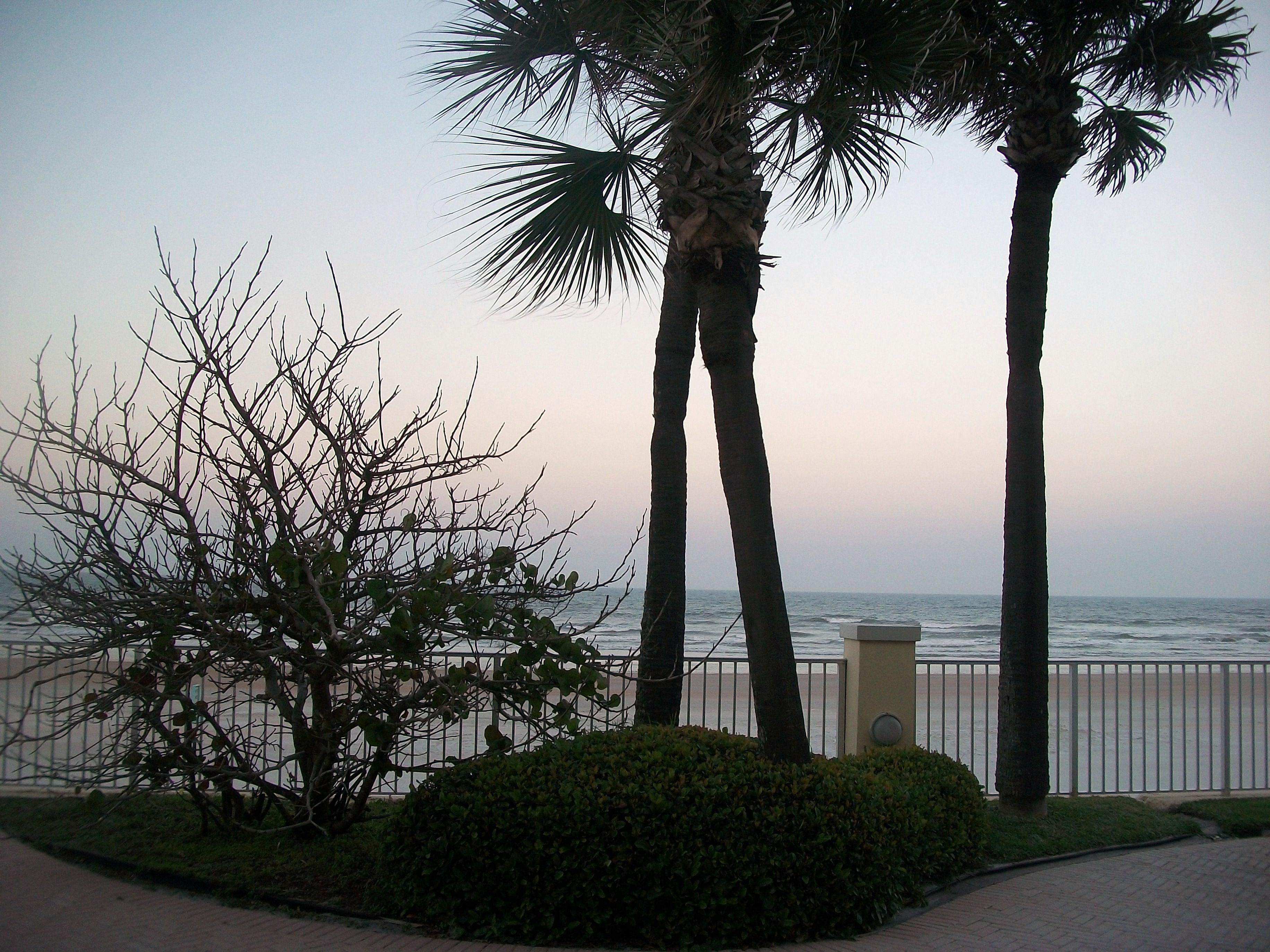 Beach view, Beach, Holiday, Sand, Tropical, HQ Photo