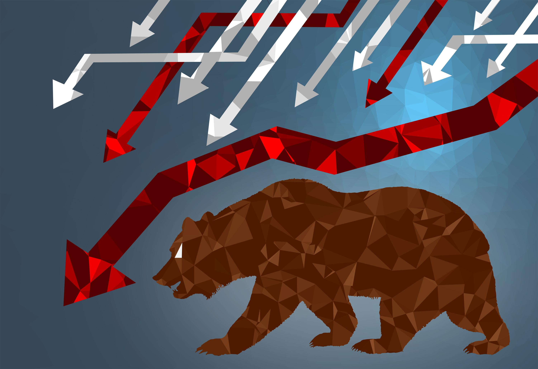 Bear market - markets are falling photo