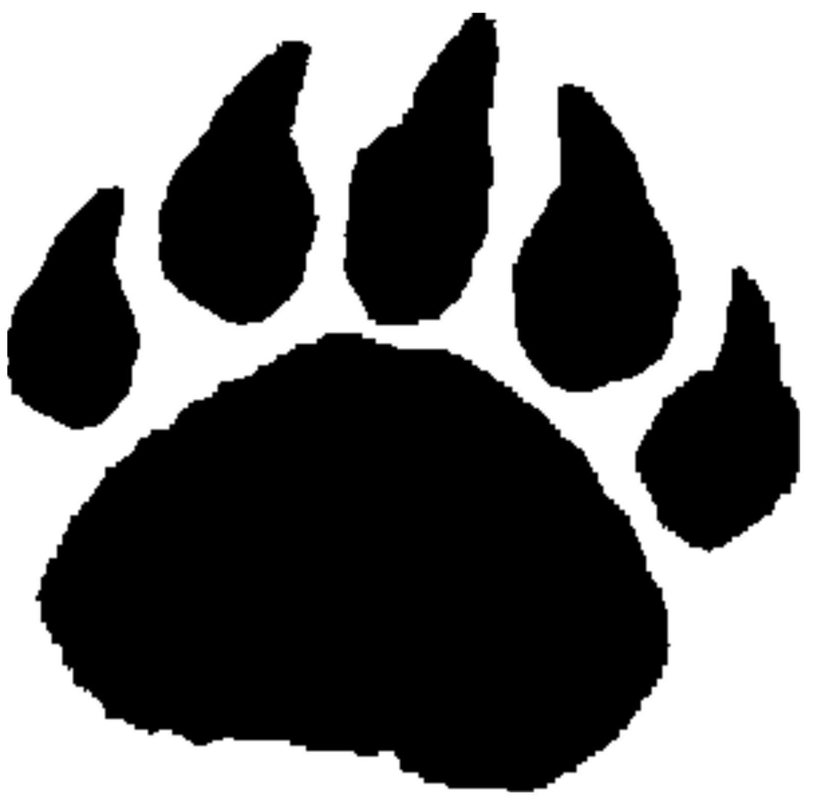 Bear paws photo