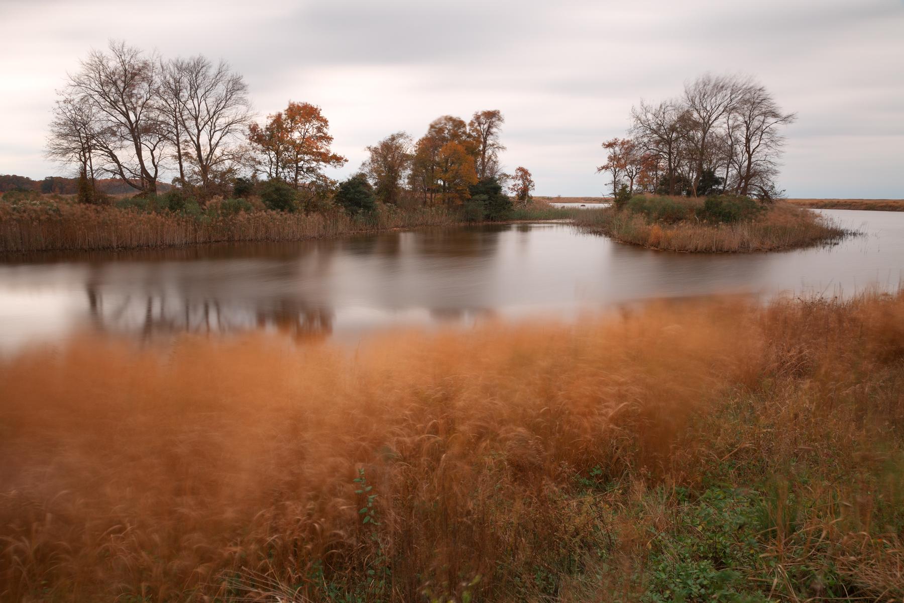 Bear Swamp Pool, America, Serenity, Serene, Seasonal, HQ Photo