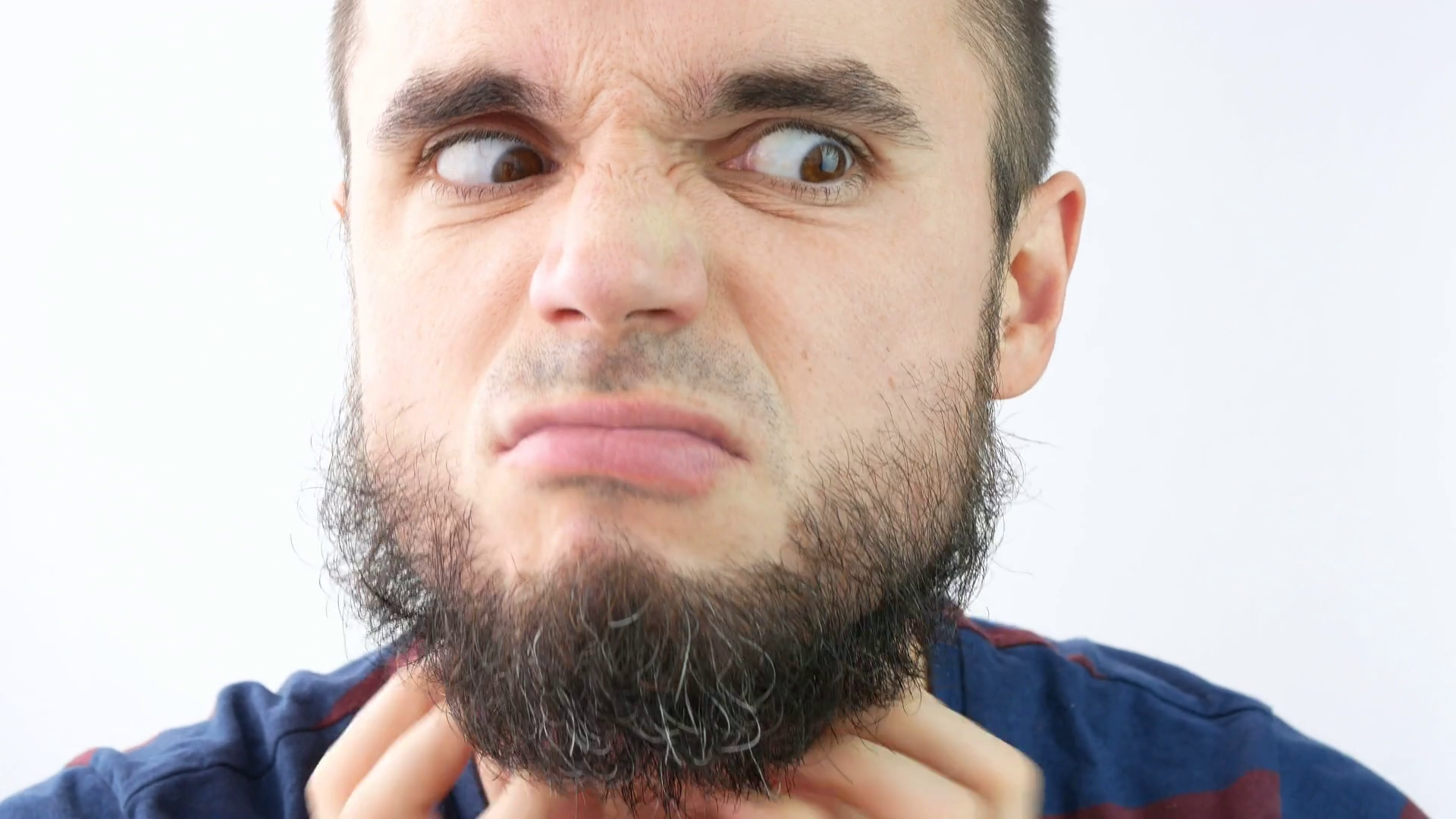 Close-up of angry bearded man face touching his beard, studio ...