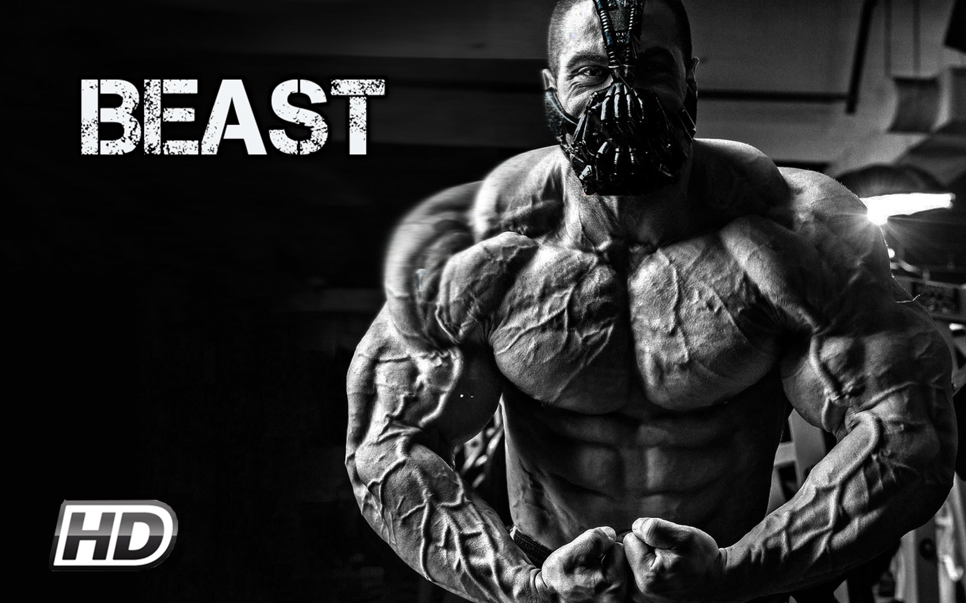 How to be a beast in studies and work — Steemit