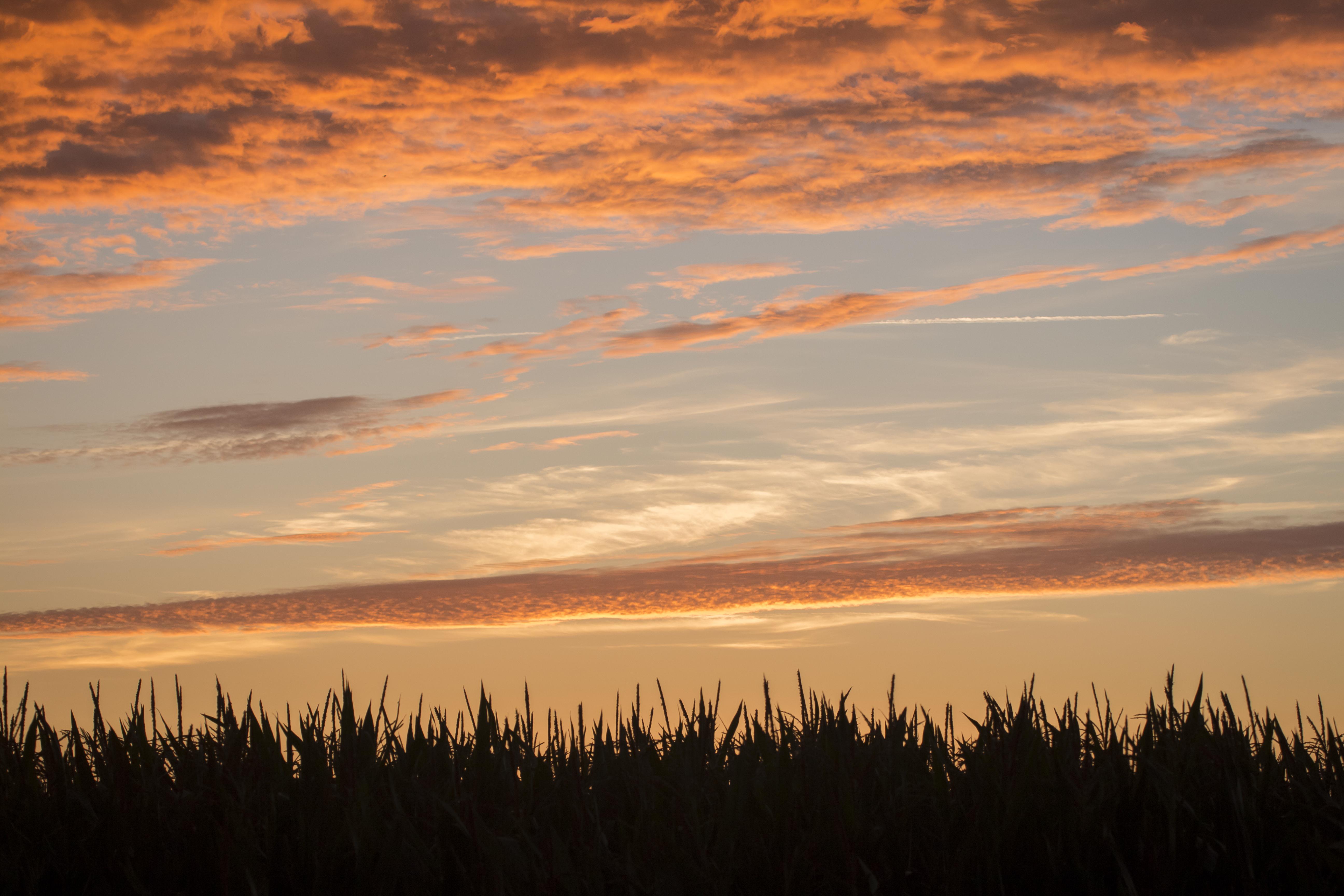 Beautiful Evening Sky by Danimatie on DeviantArt