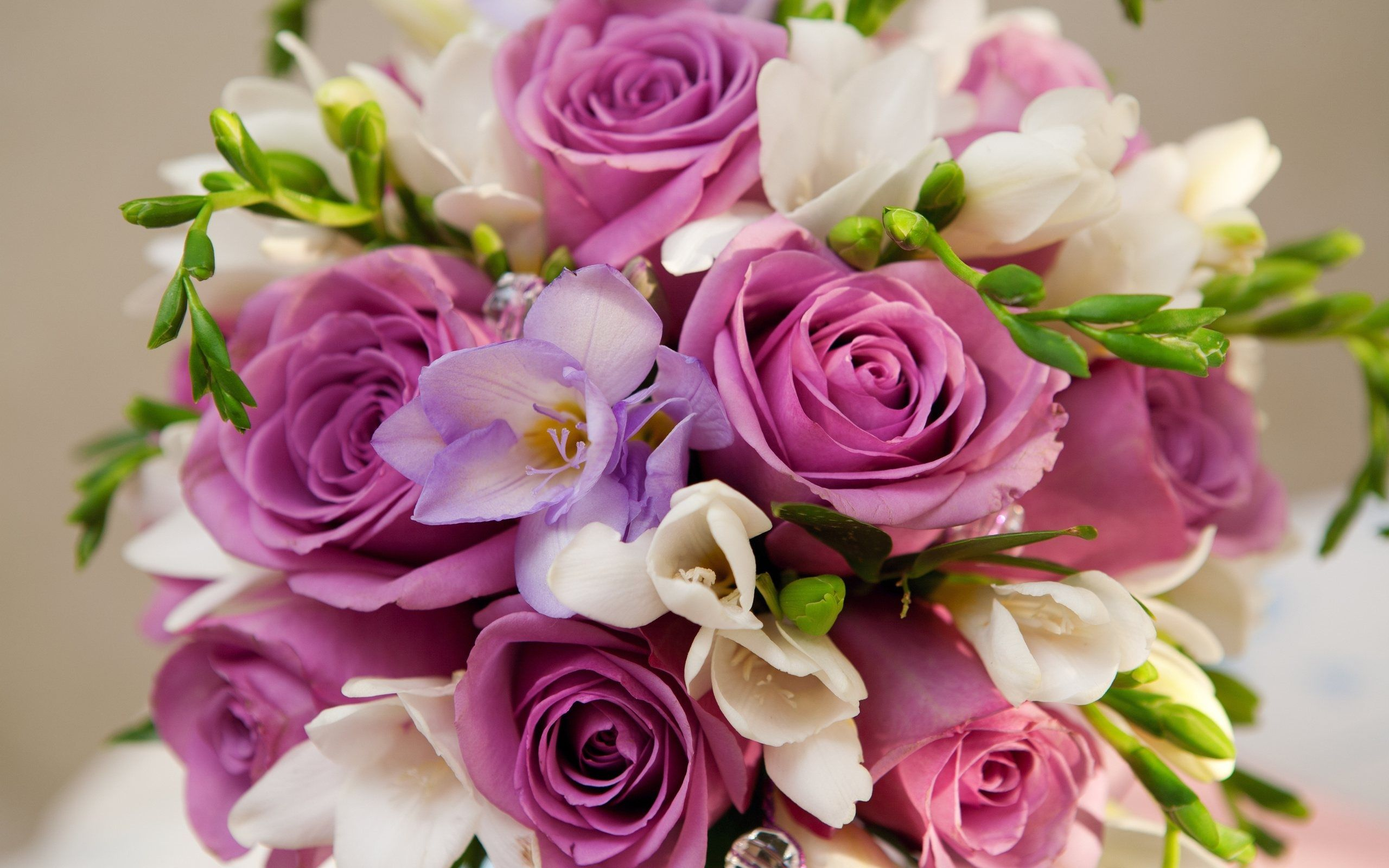 Free Photo Beautiful Flower Bouquet Rose White Pink Free