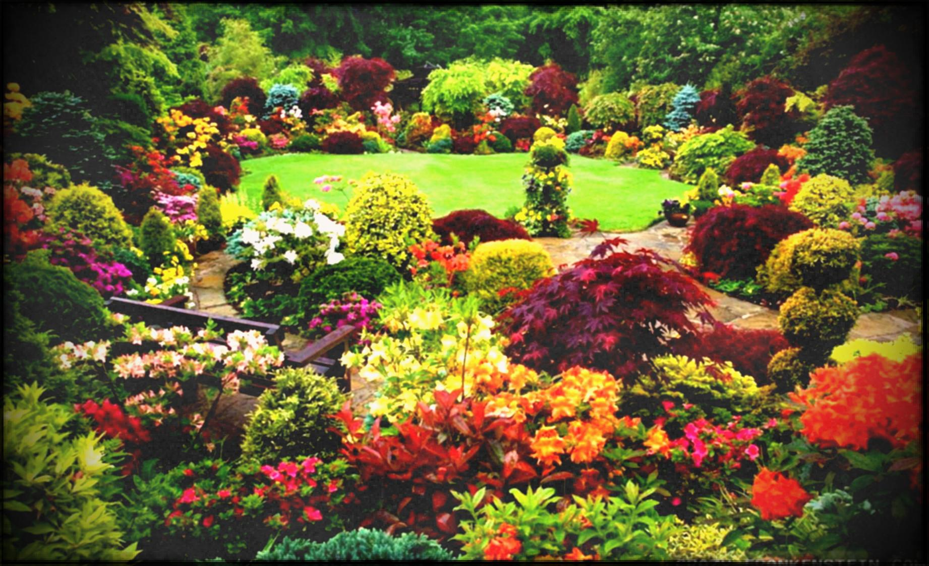 Wallpaper Amazing Beautiful Gardens With Colorful Flowers And Trees ...