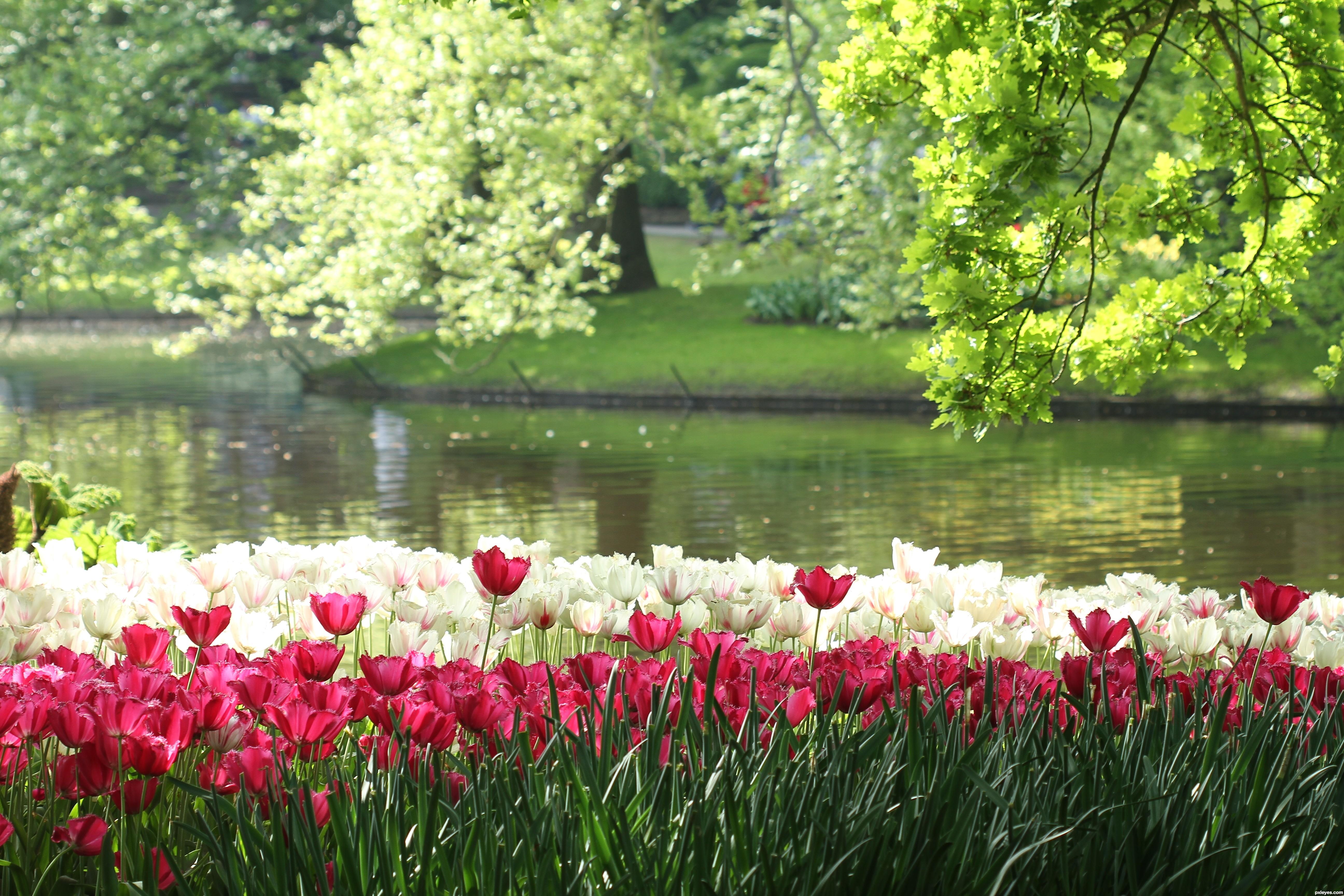 20 Beautiful Gardens | greenfleet.info
