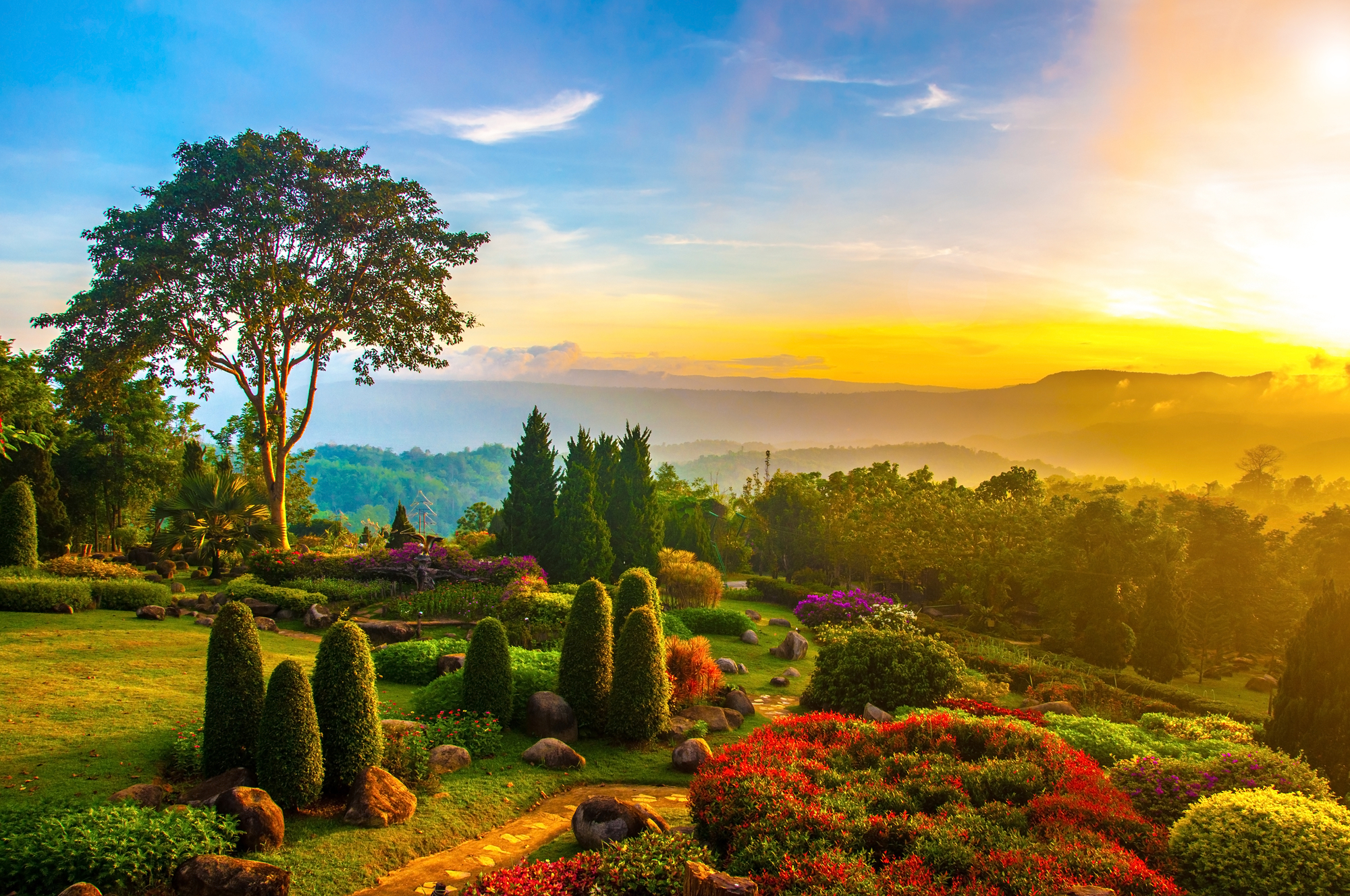 Beautiful garden of colorful flowers on hill with sunrise in the ...