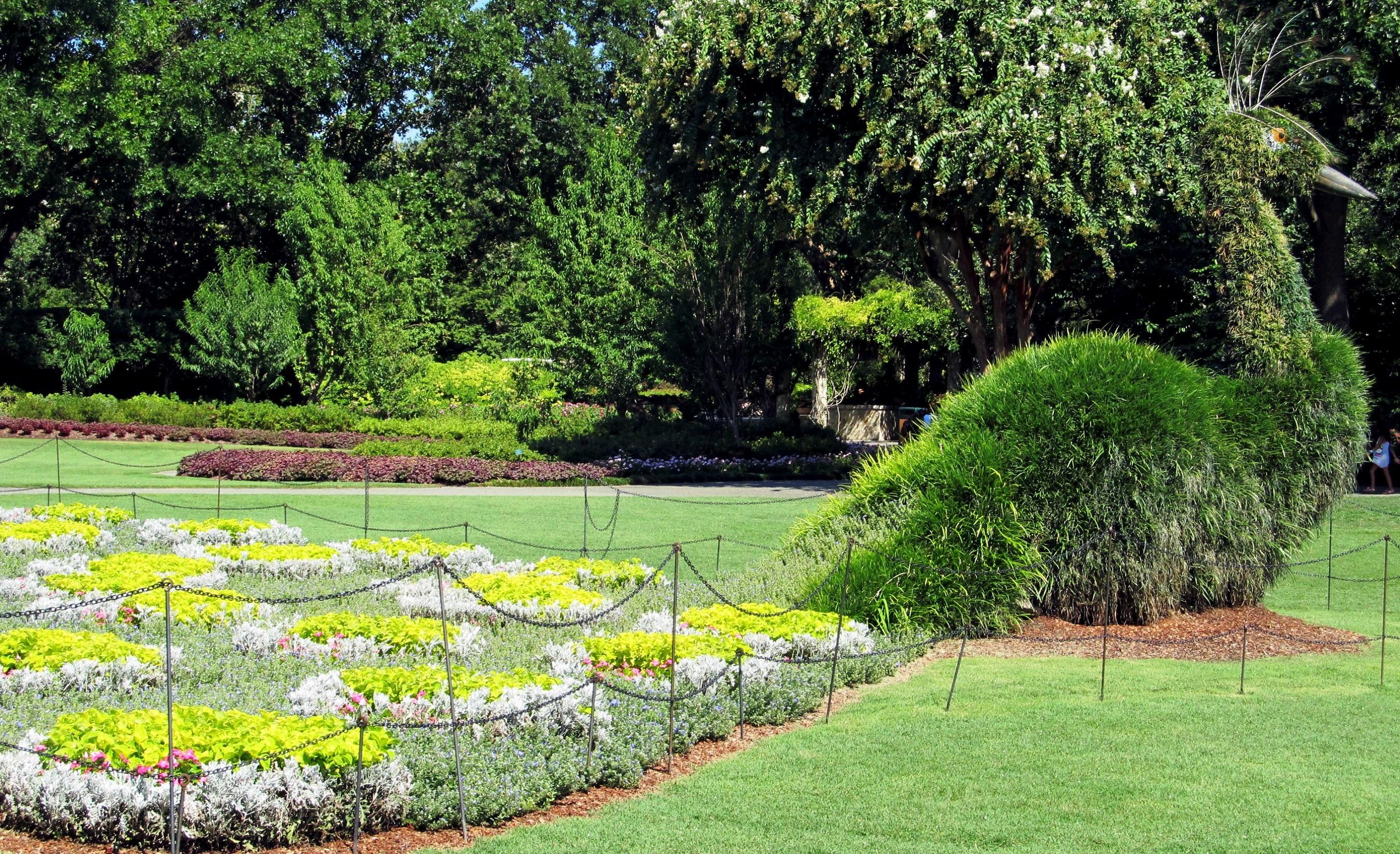 Beautiful Garden, Flower, Fragrance, Fresh, Garden, HQ Photo