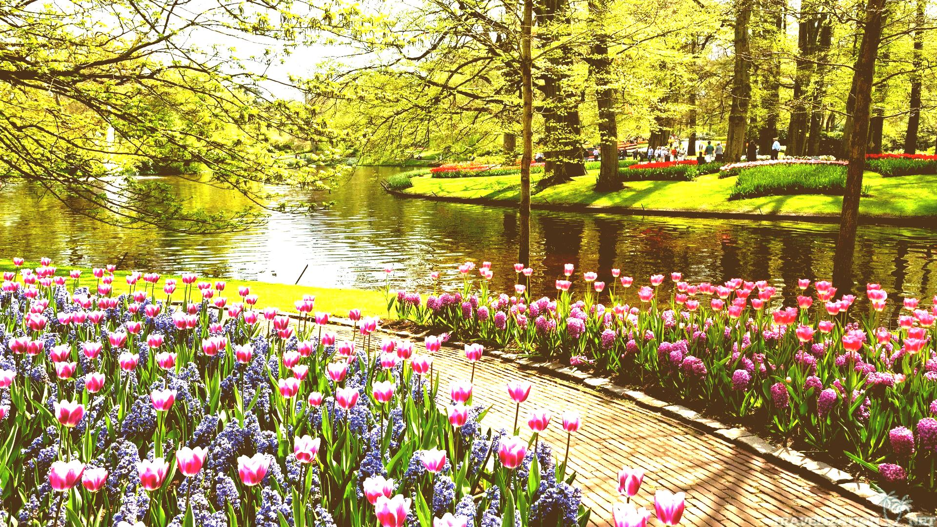 Download Beautiful Garden Solidaria Co Wallpapers Wallpaper Gardens ...