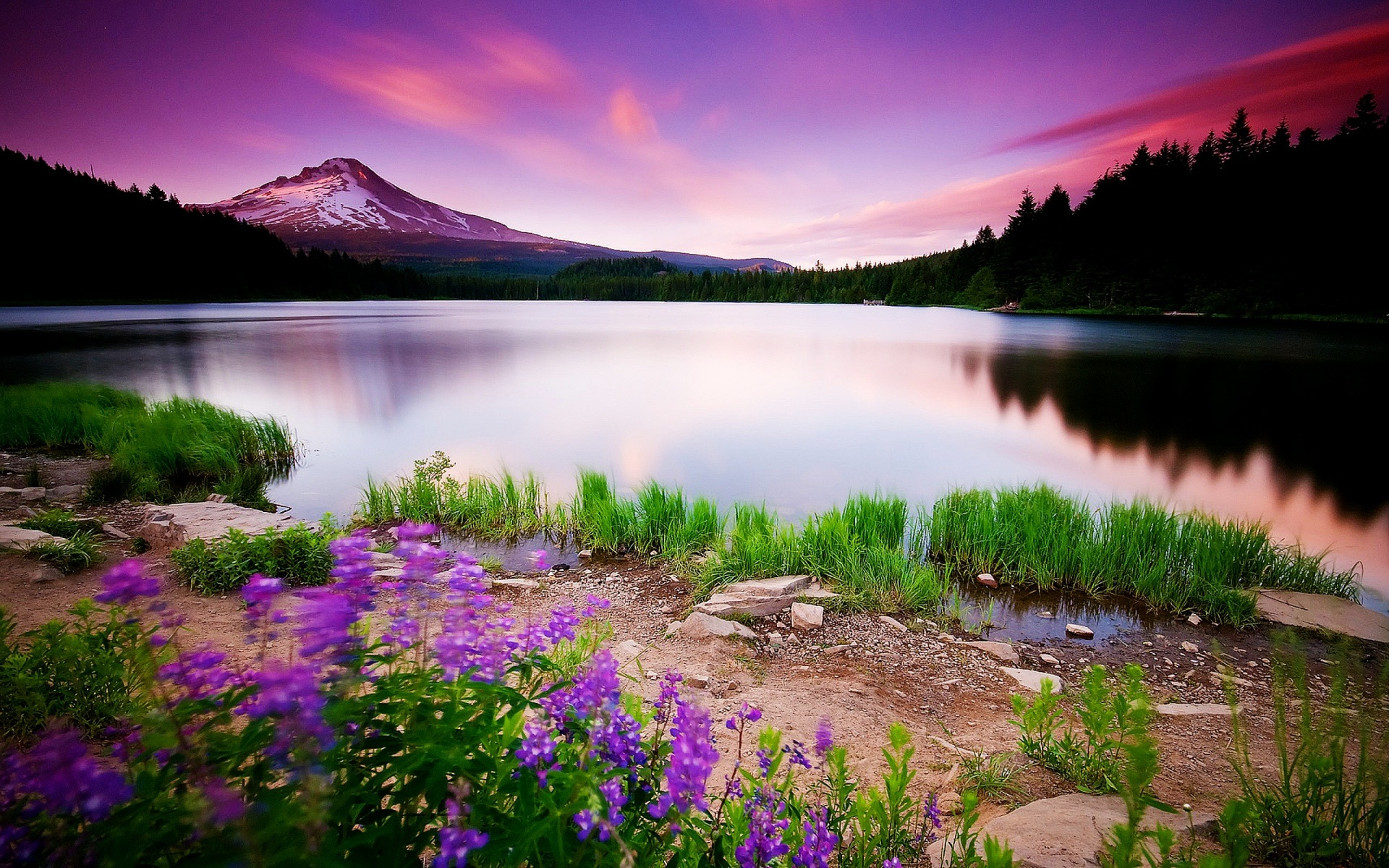 Beautiful landscape photo