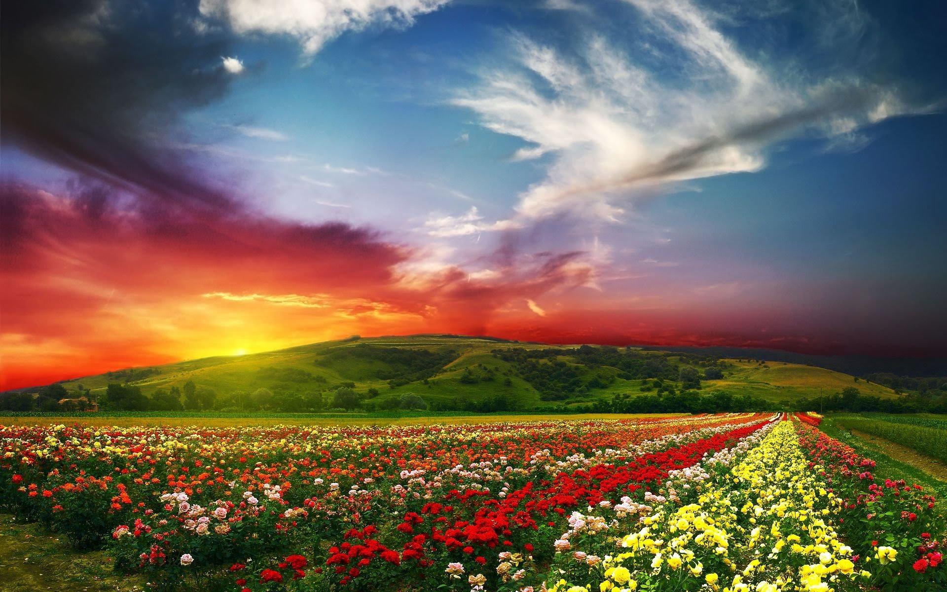 Beautiful Landscapes - 4K Ultra HD - YouTube