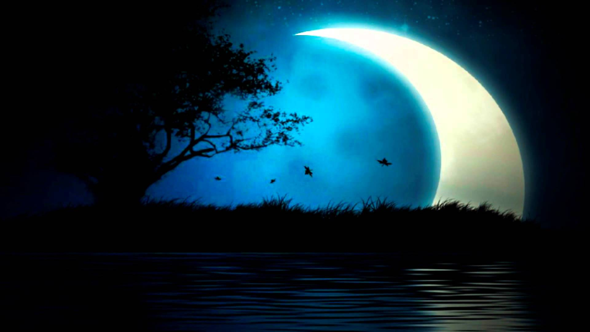 Moonligt