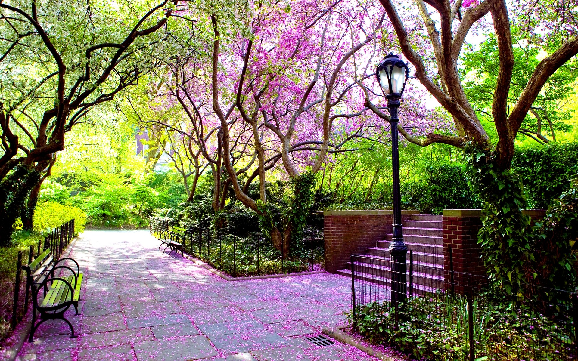 Amusement Parks: BEAUTIFUL PARK Blooms Bench Lamp Post Trees ...