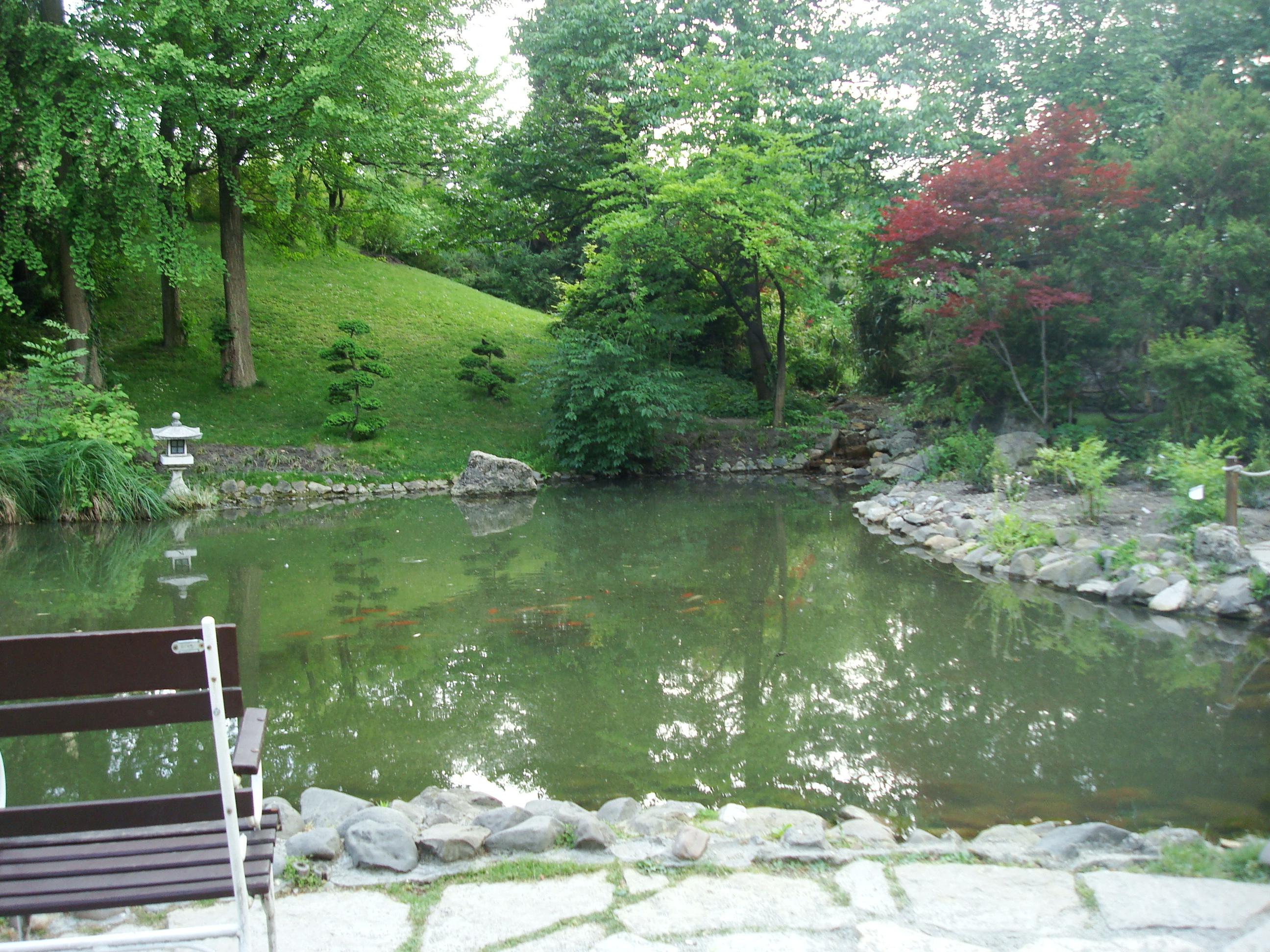 Beautiful park, Beautiful, Bench, Calm, Garden, HQ Photo