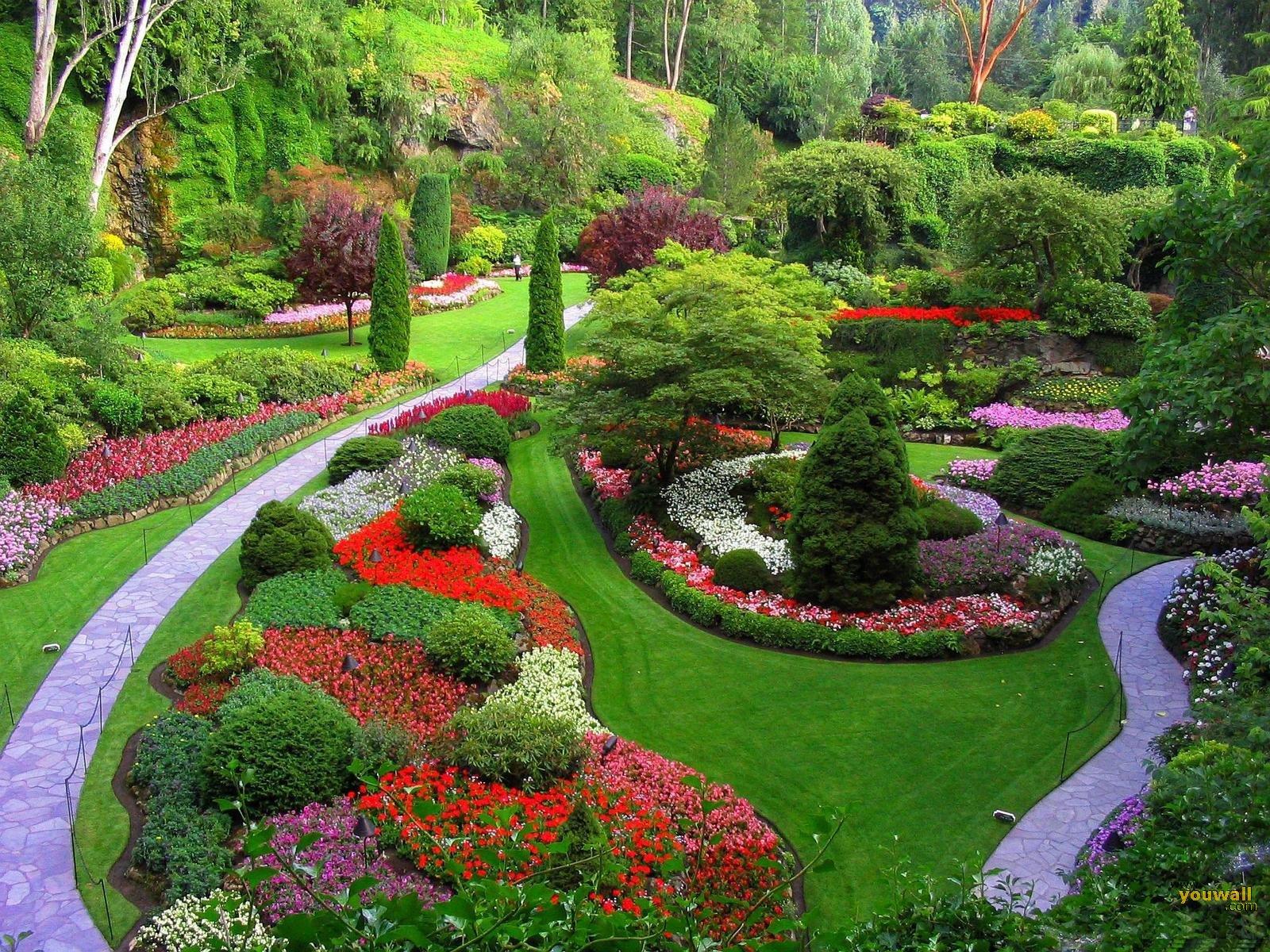 Beautiful-Flower-Park-Wallpaper-HD-free-for-desktop - HD Wallpaper
