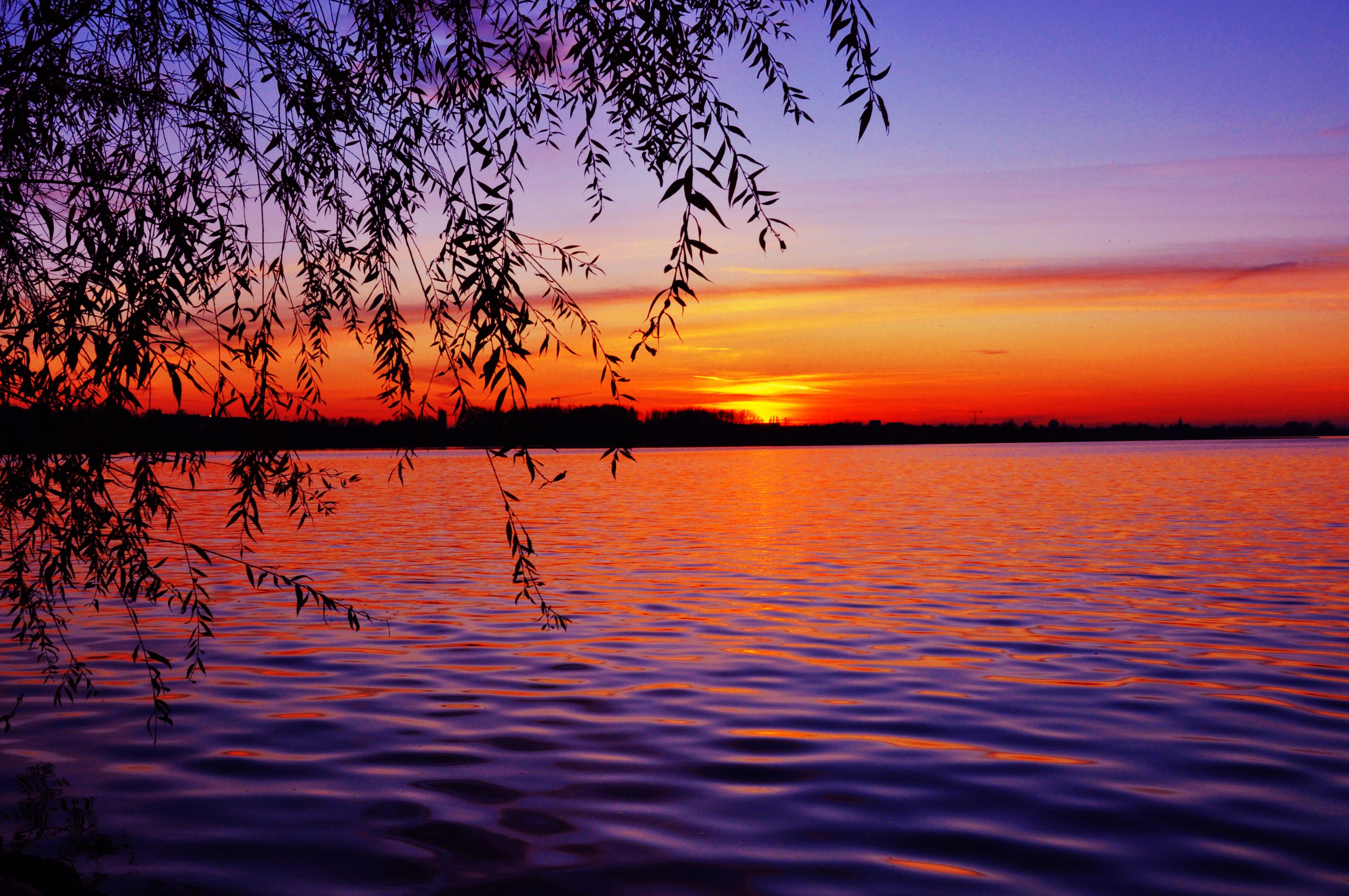 Free photo: Beautiful Sunset View - Beautiful, Dusk ...