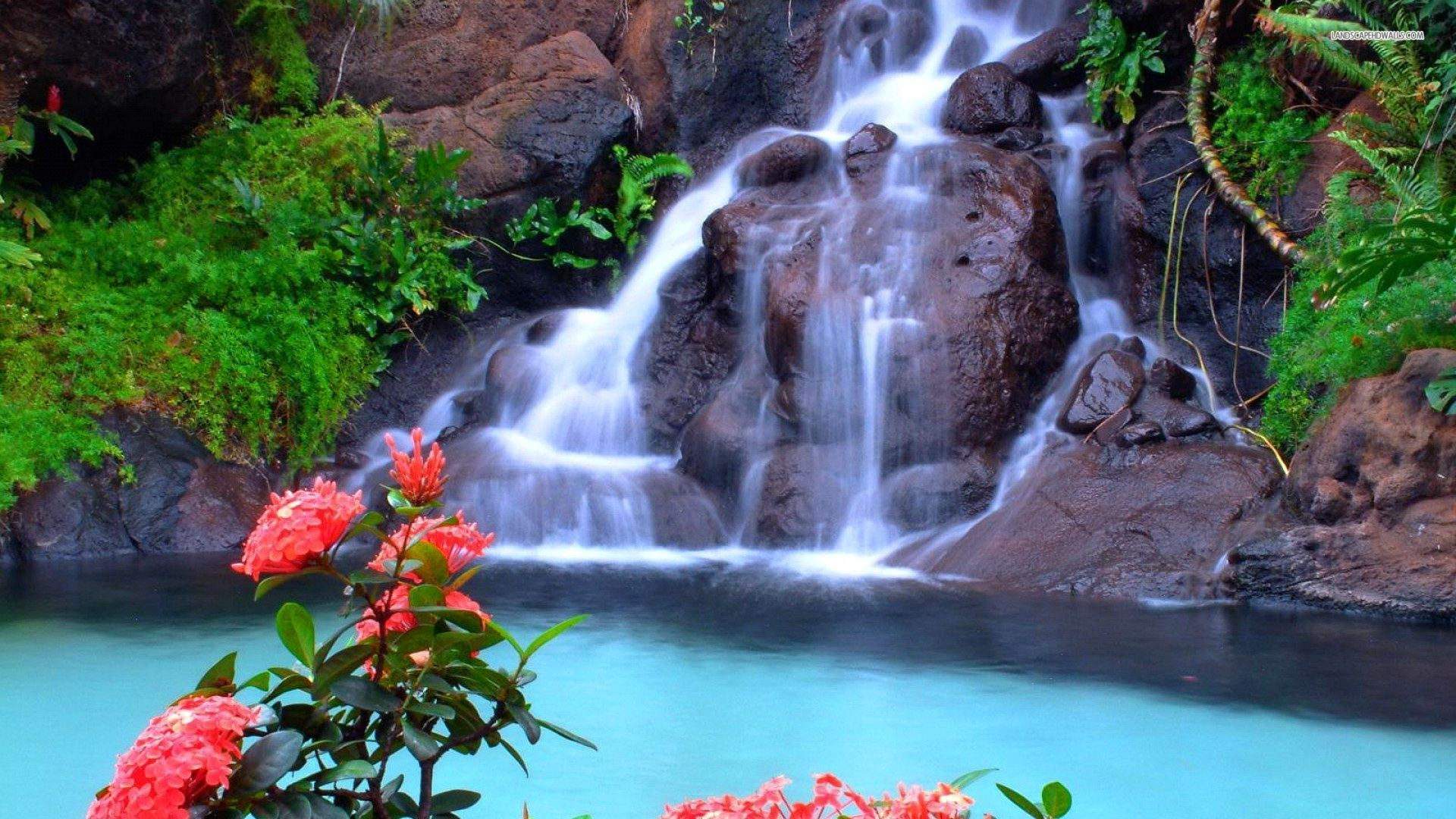 beautiful-waterfall-and-pink-flowers-free-hd-for-desktop - HD Wallpaper