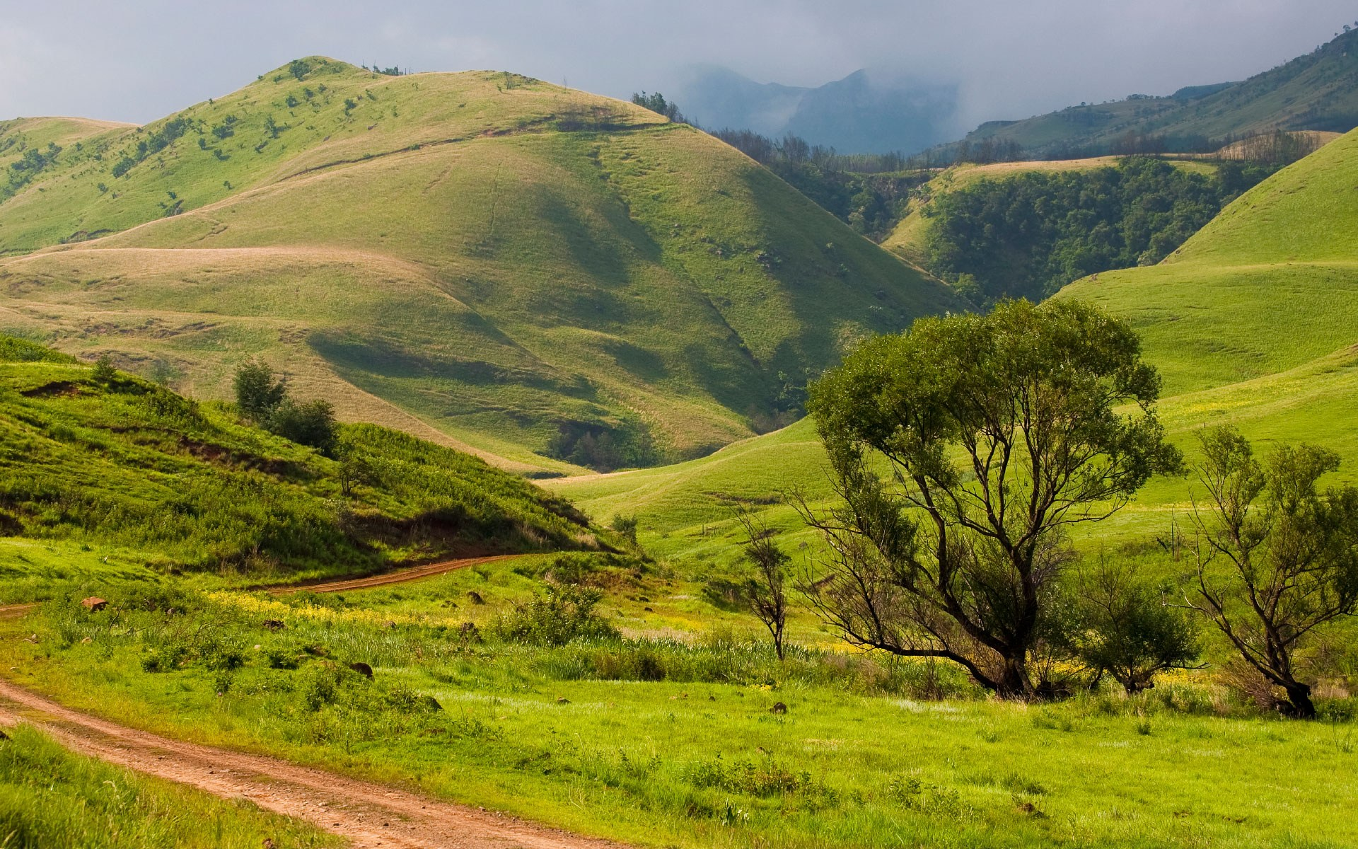 South Africa Land of Beauty and Splendor | Jaksonian Philosophy