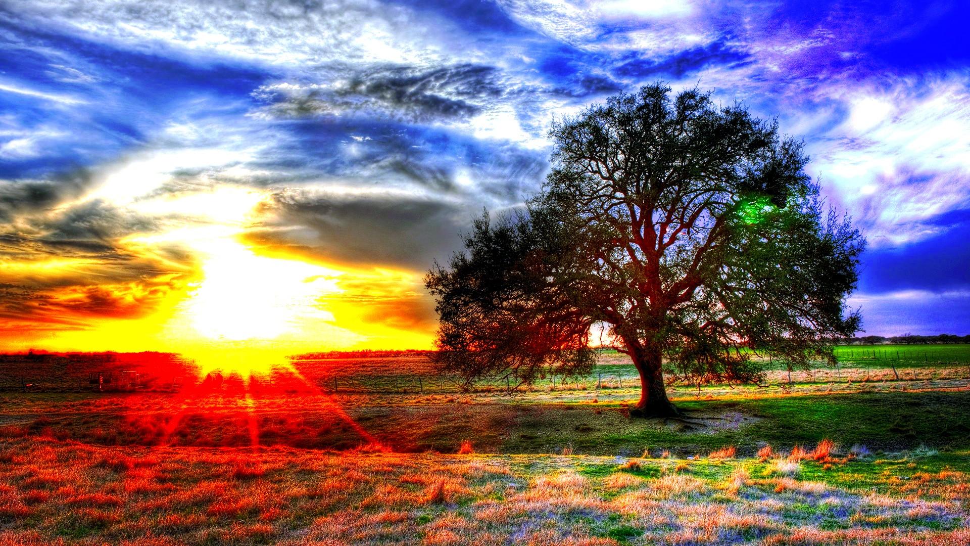 Sunset: Beautiful Loneliness Colorful Sunlight Sun Horizon Sky Scene ...