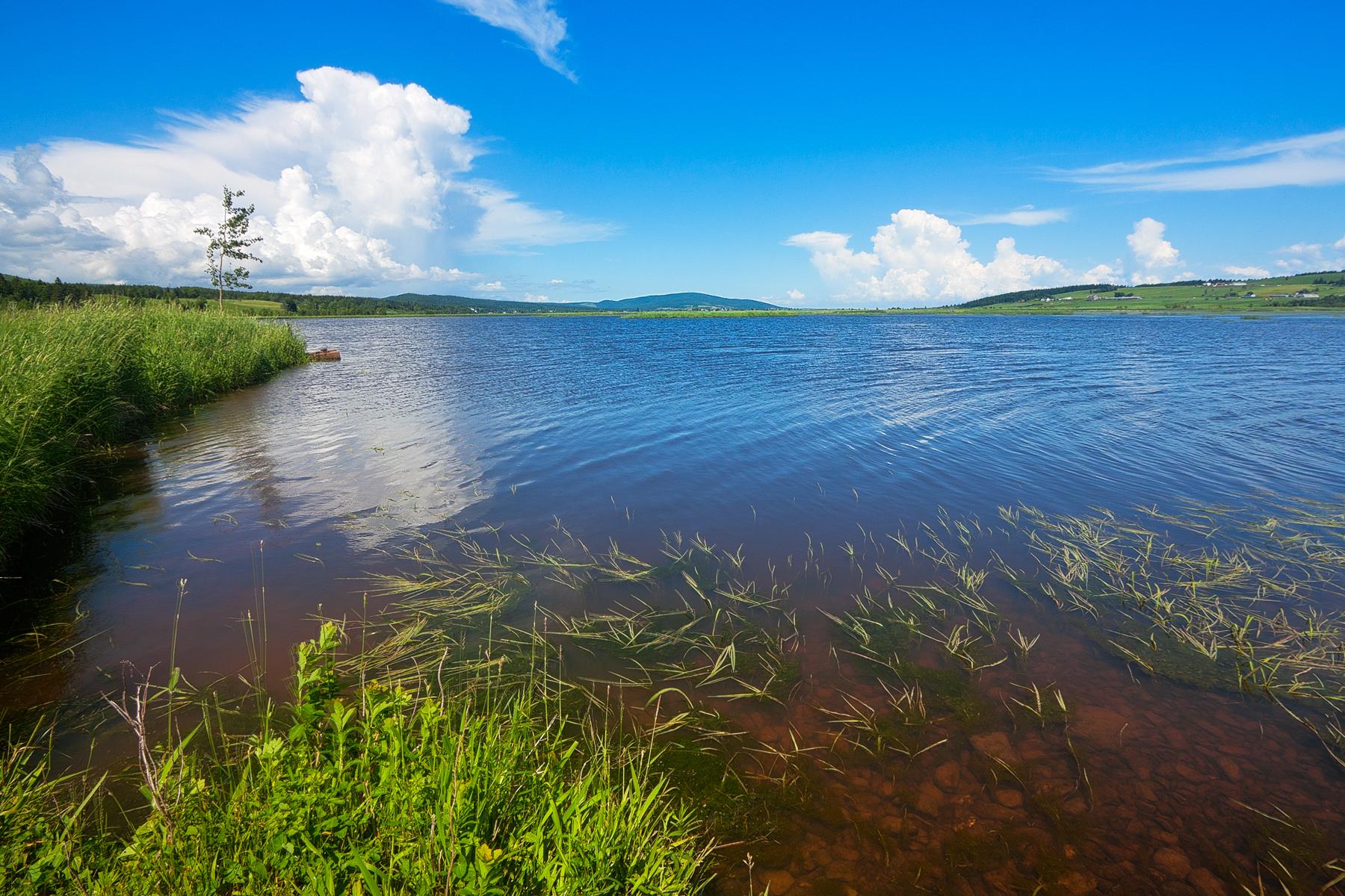Beaver brook scenery - hdr photo