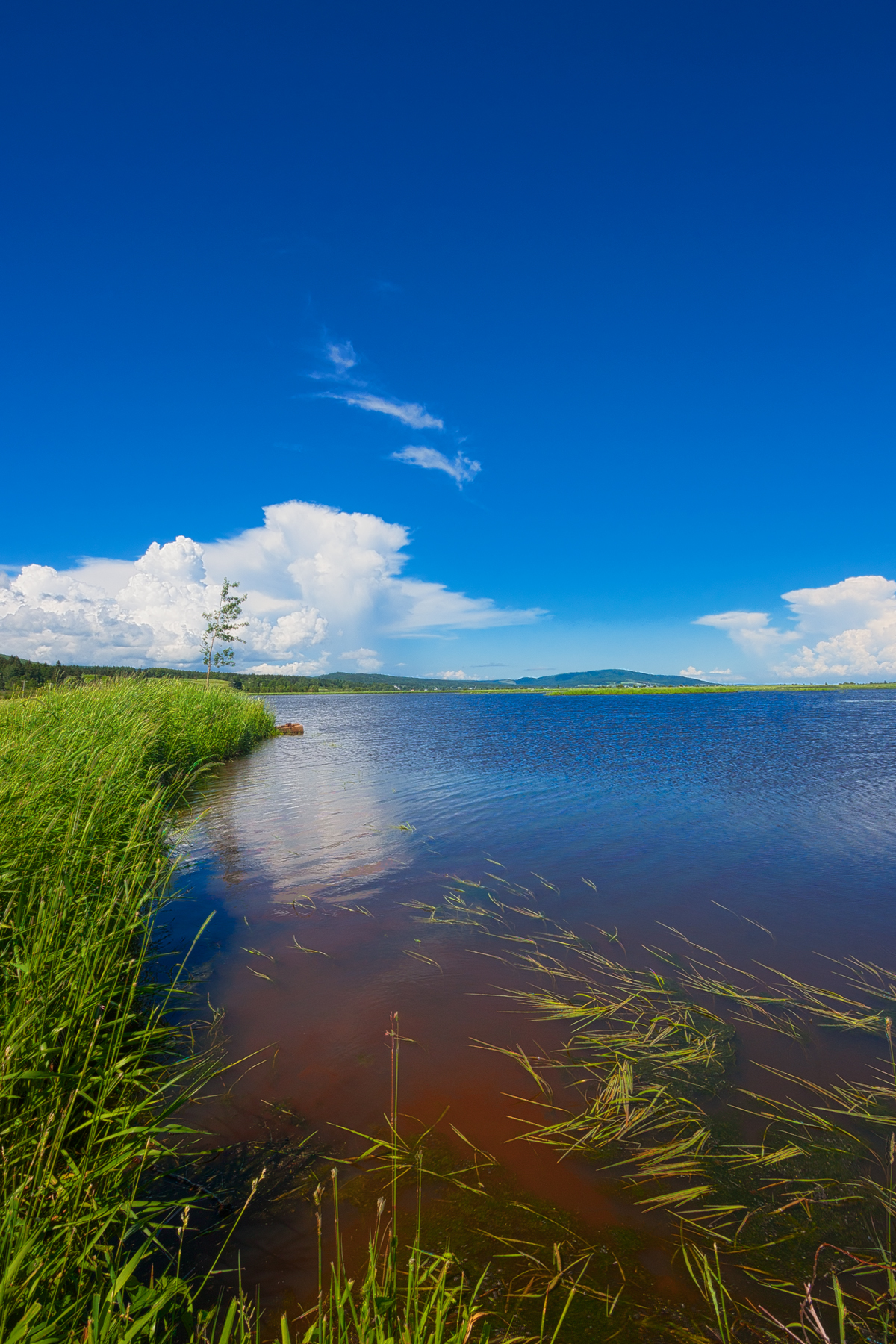 Beaver Brook Scenery - HDR, Angle, Res, Red, Raymond, HQ Photo