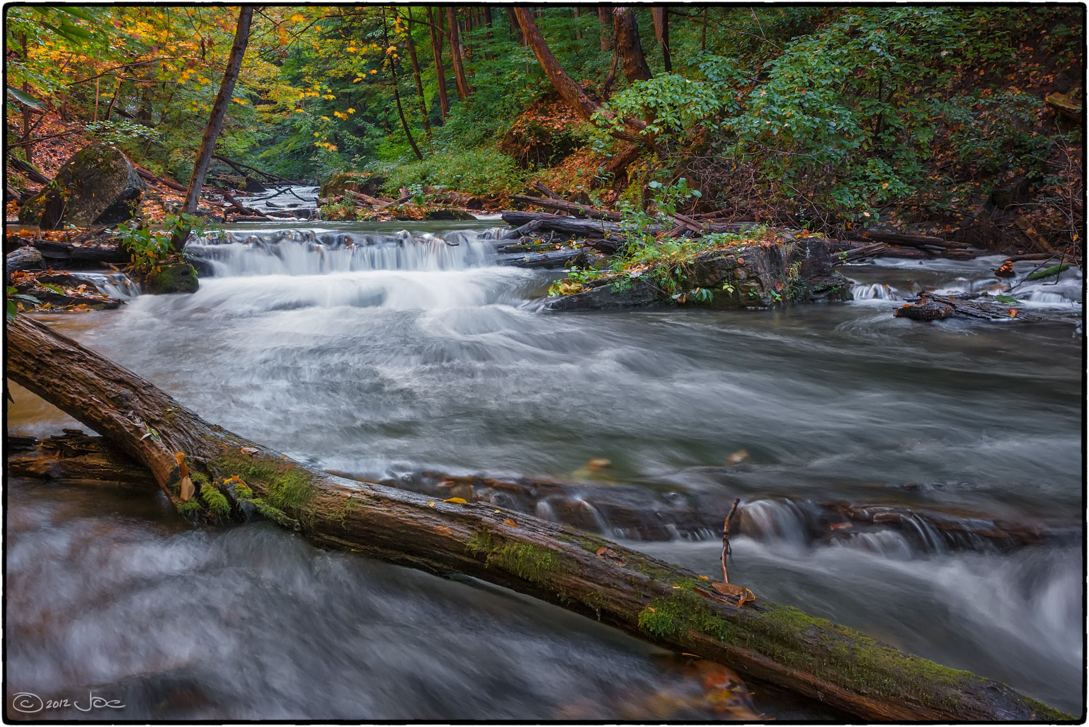 Beaverdams creek, st. catharines ontario photo