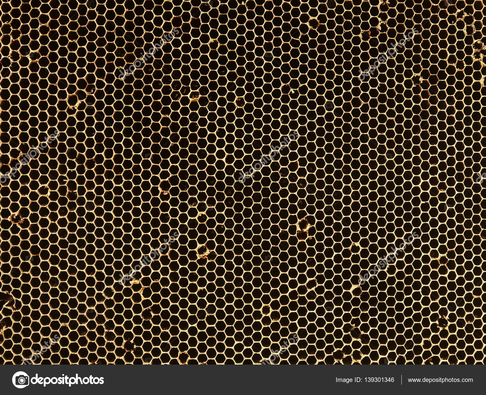 Beehive Honeycomb Pattern Textured — Stock Photo © viteethumb #139301346