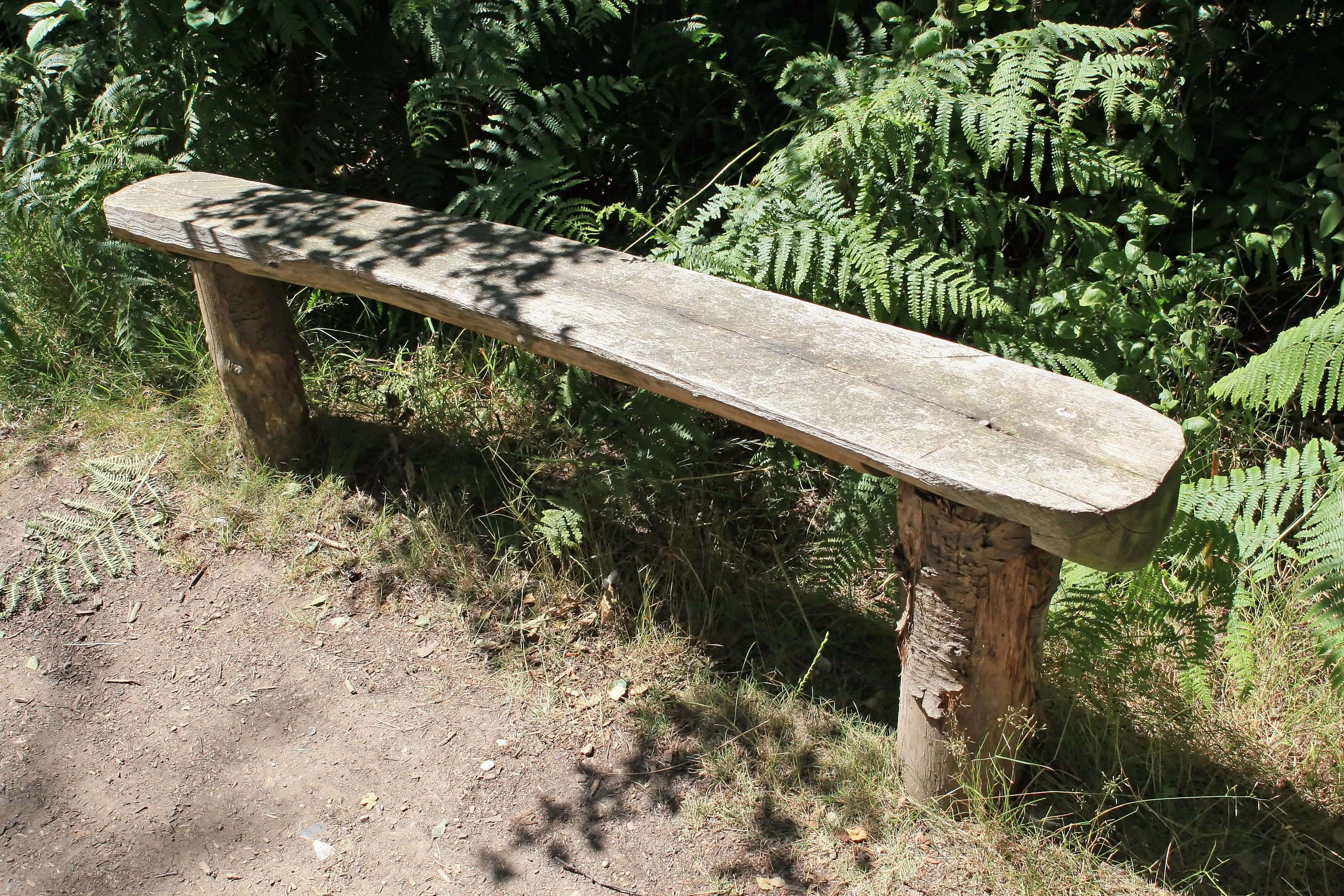 Bench, Sit, Wild, Wood, Wooden, HQ Photo