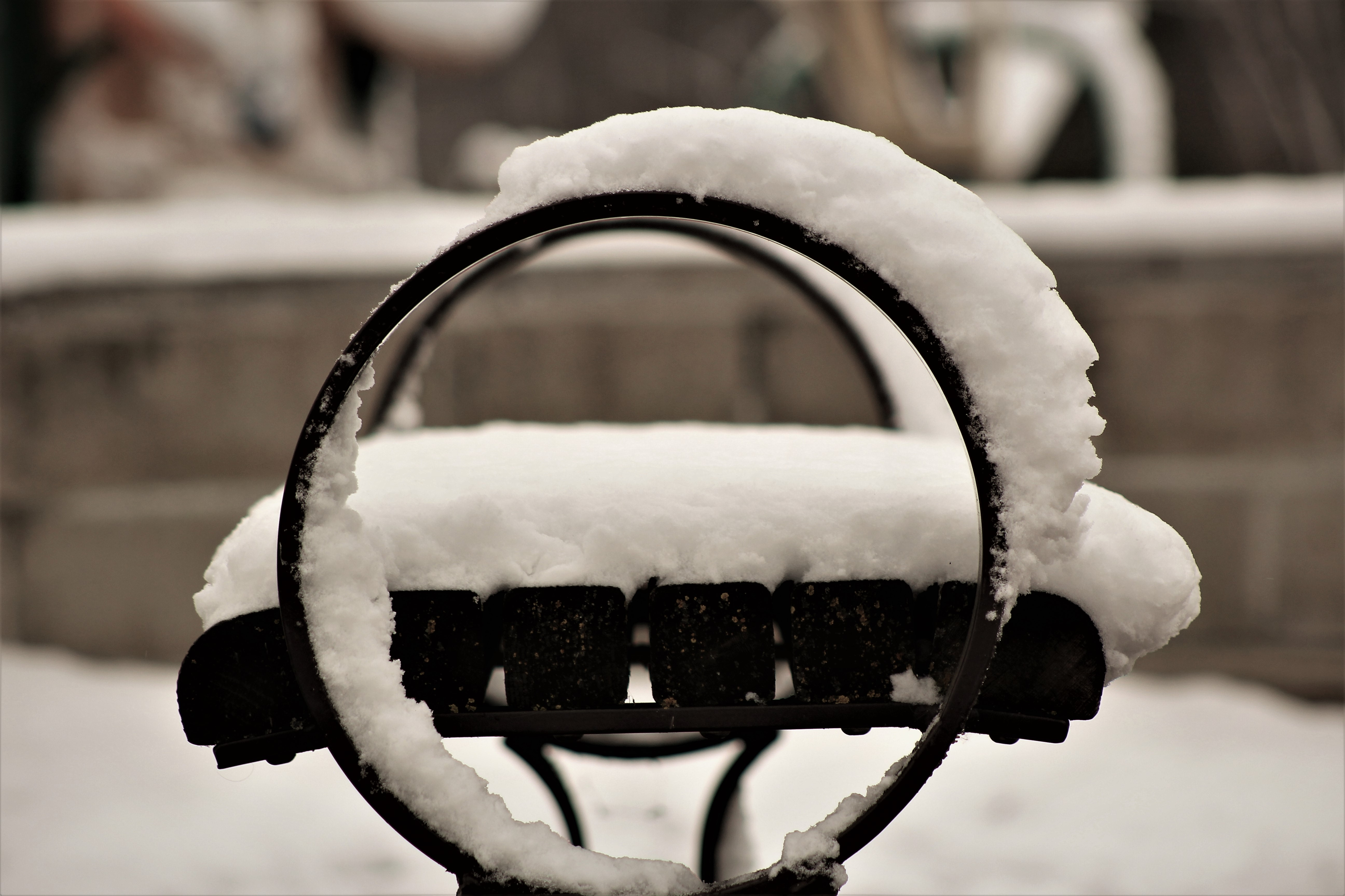 Bench in the snow photo