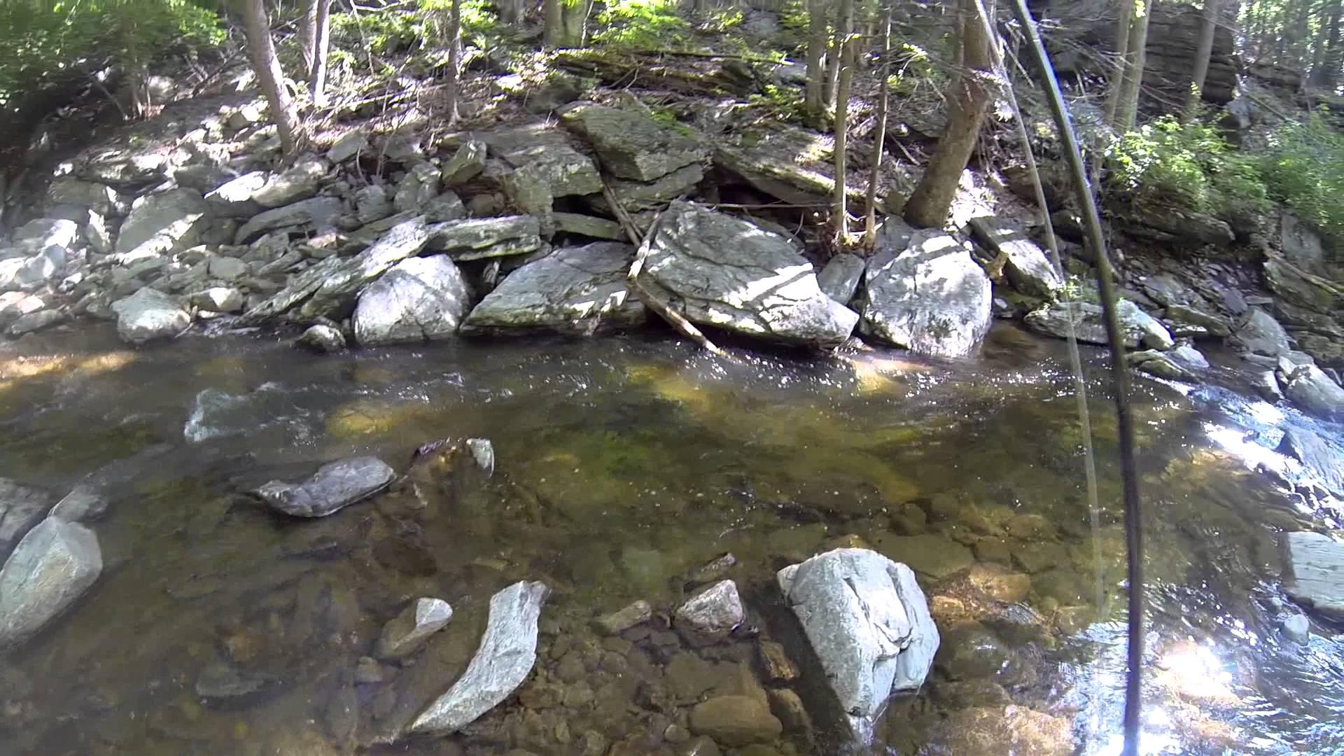 Fly Fishing Big Hunting Creek 05/31/14 Thurmont, MD - YouTube