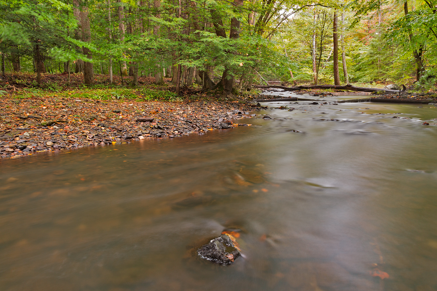 Big Hunting Creek, America, Somadjinn, Soft, Smooth, HQ Photo
