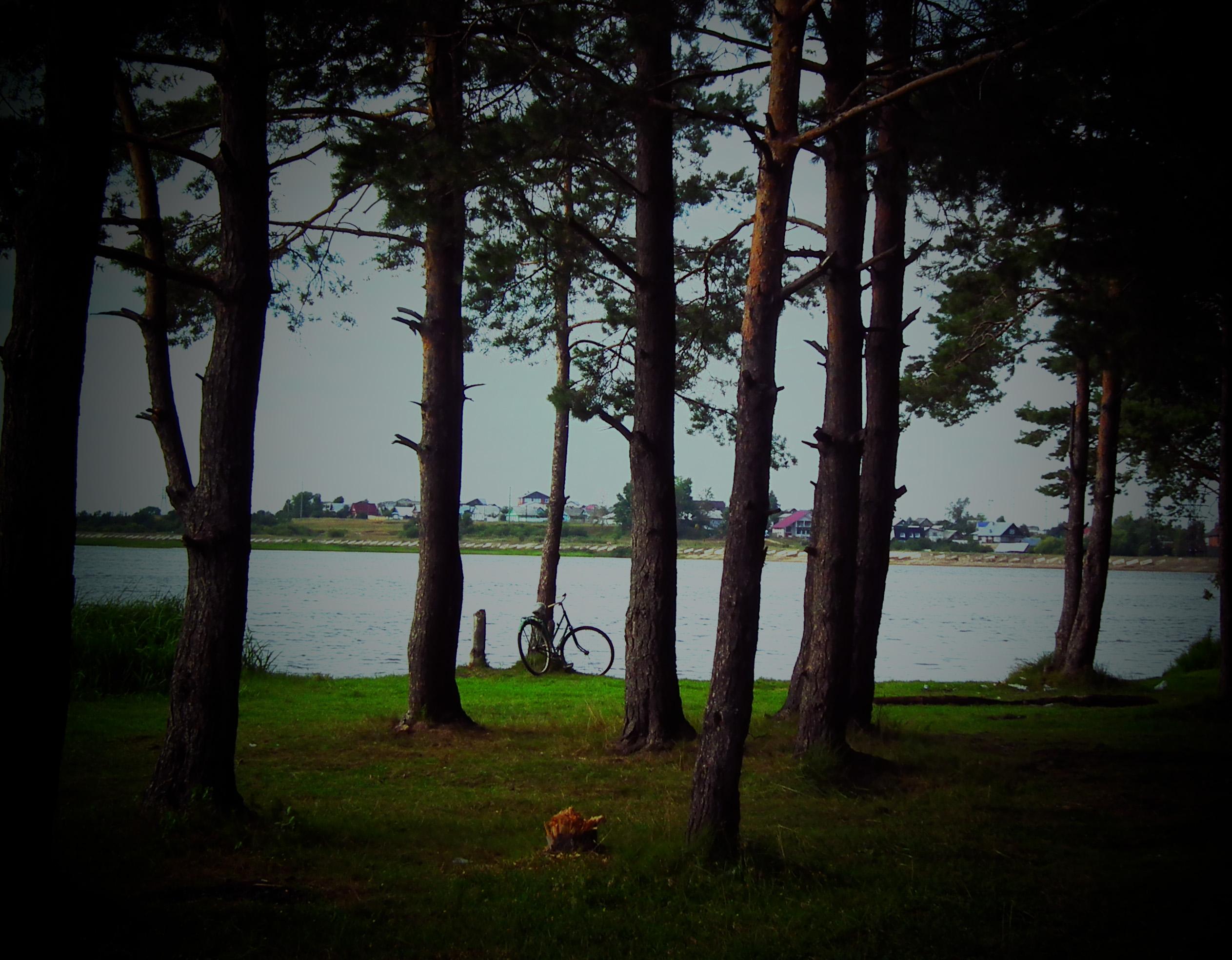 Bike on the summer beach photo