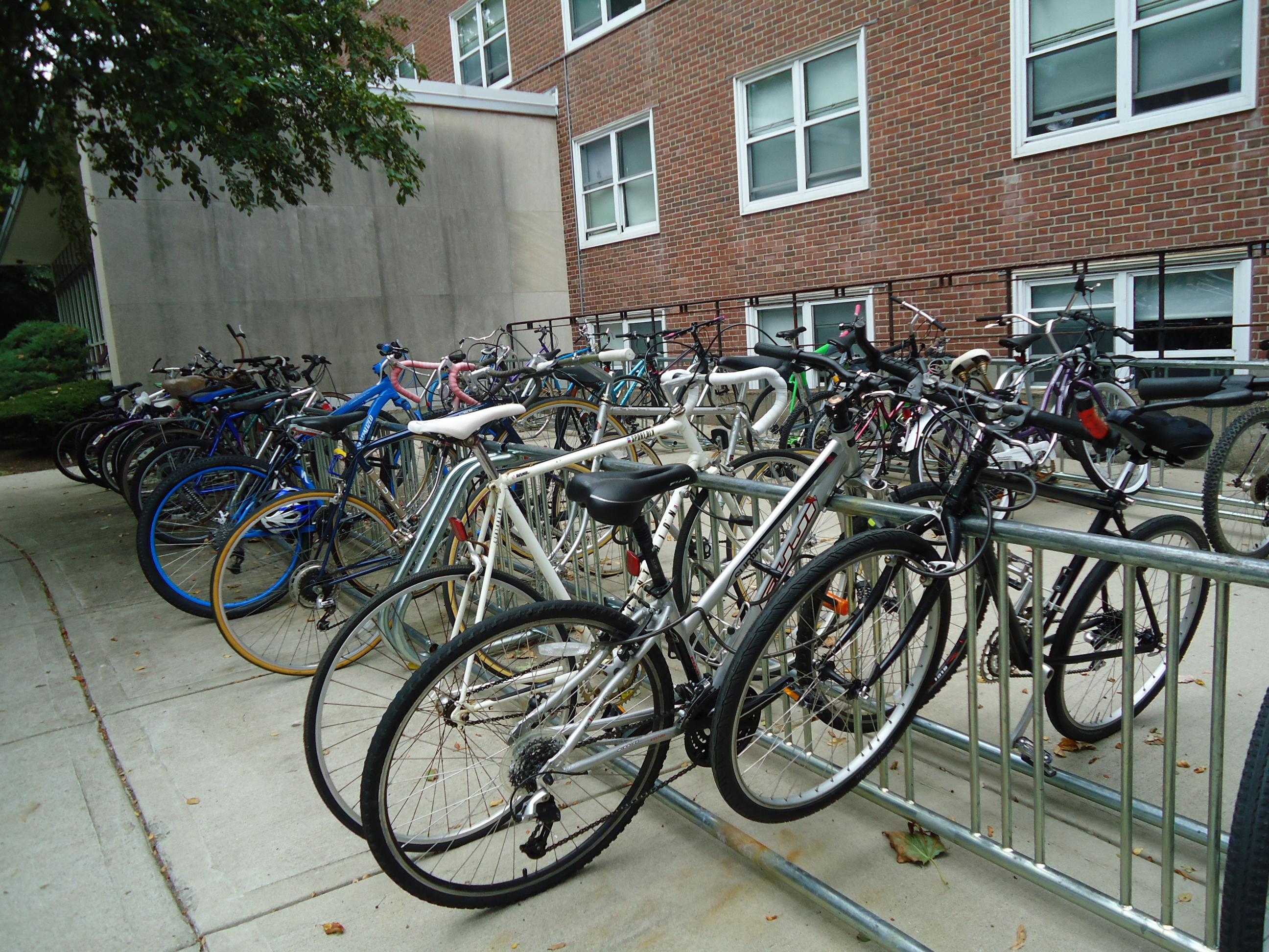 Bikes in a bike rack, Bicycles, Bikes, Rack, Stand, HQ Photo