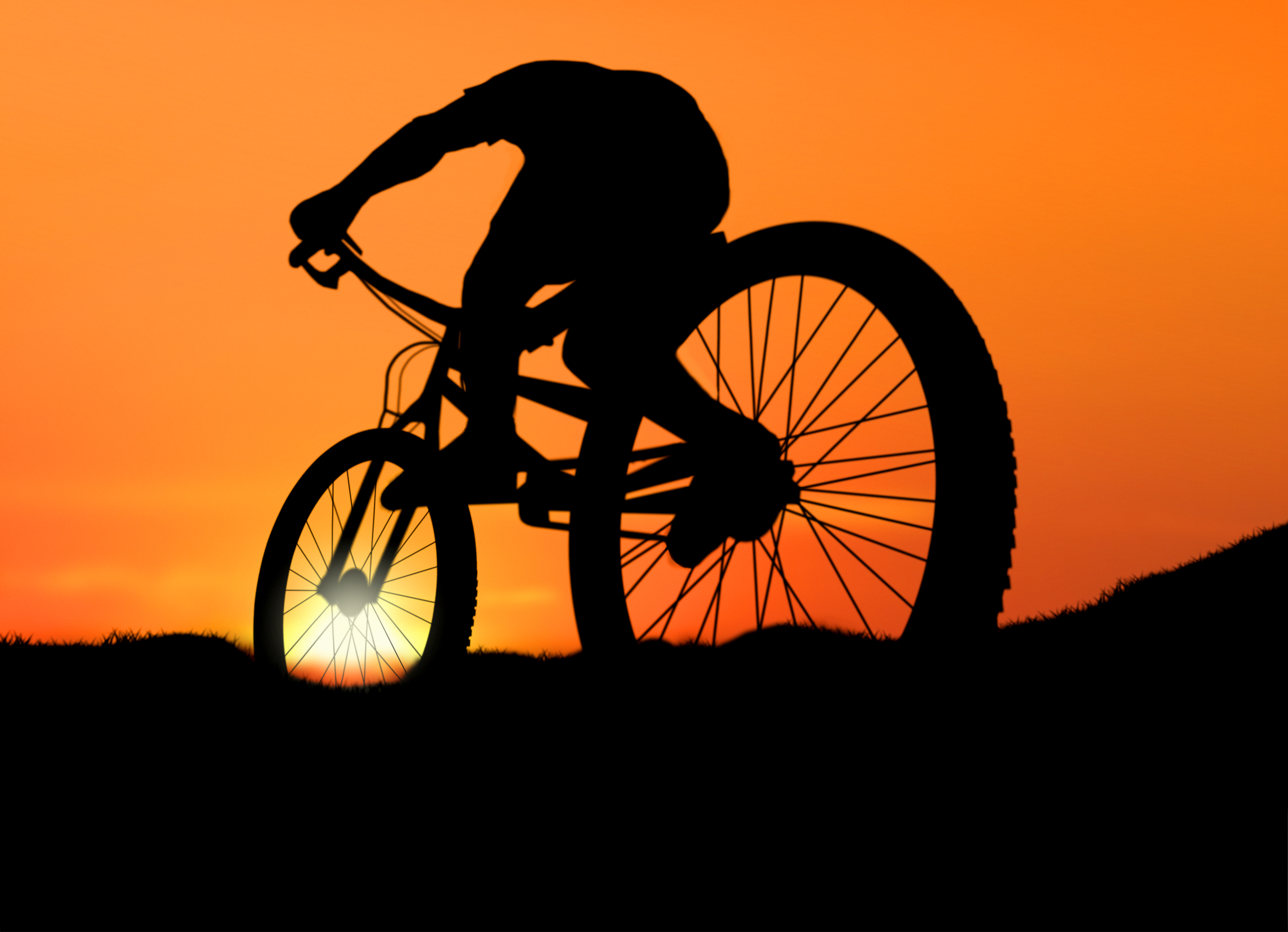 Biking into the Sunset, Race, Sky, Road, Ride, HQ Photo